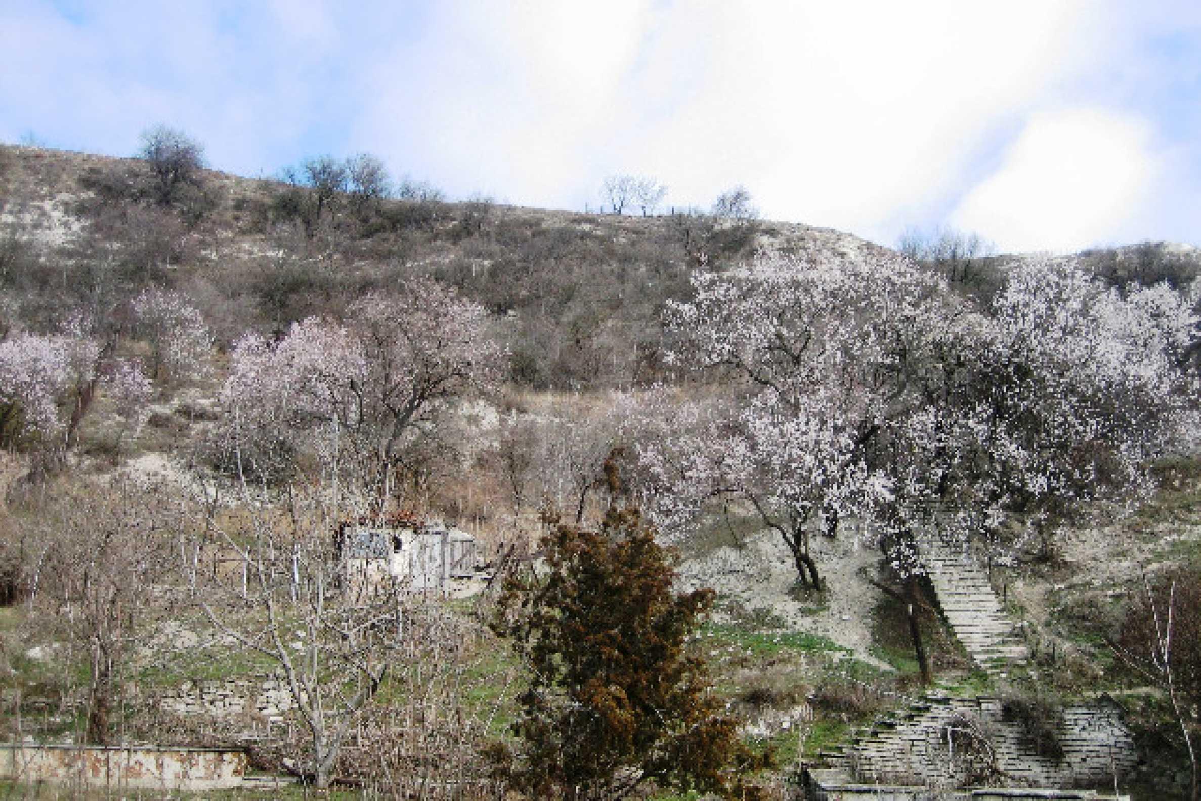 Development land for sale in Balchik 2