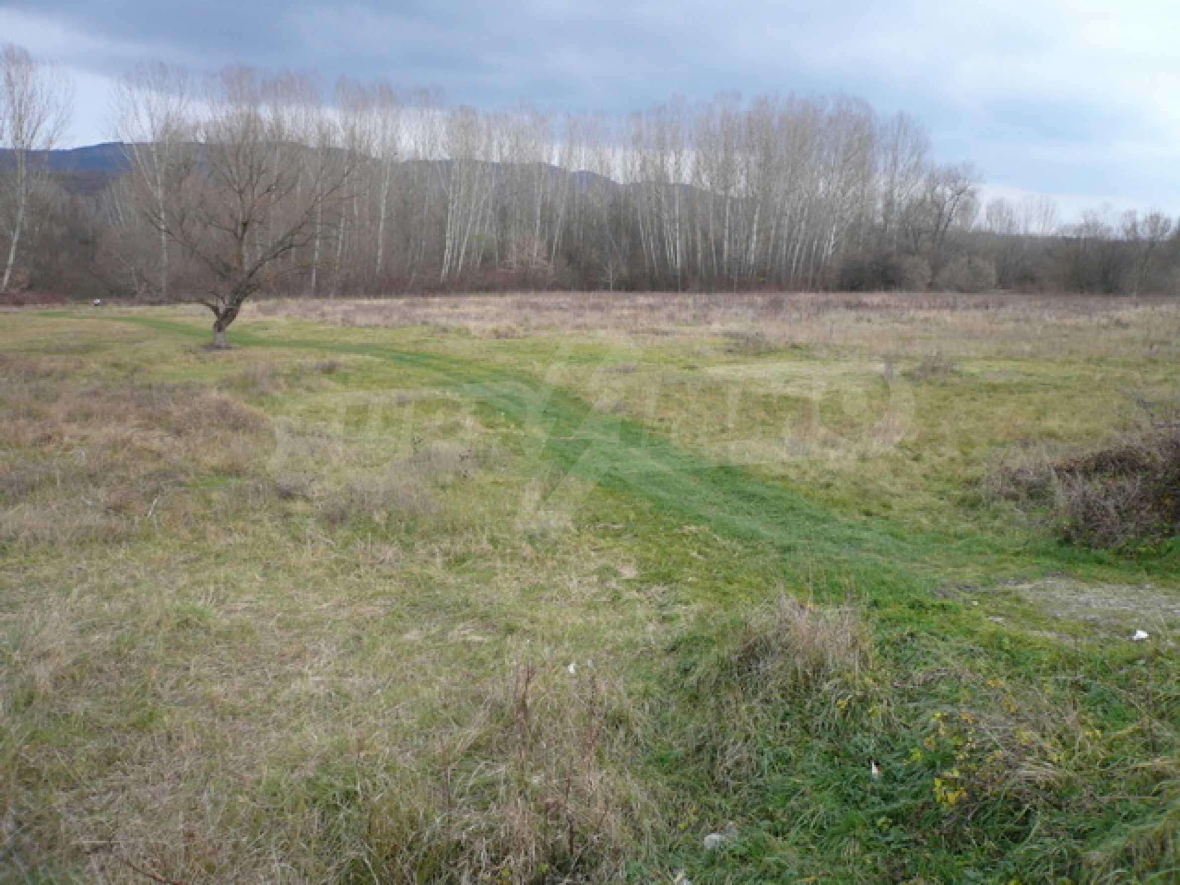 Grundstück in der Nähe der Hauptstraße Gabrovo-Sevlievo 5