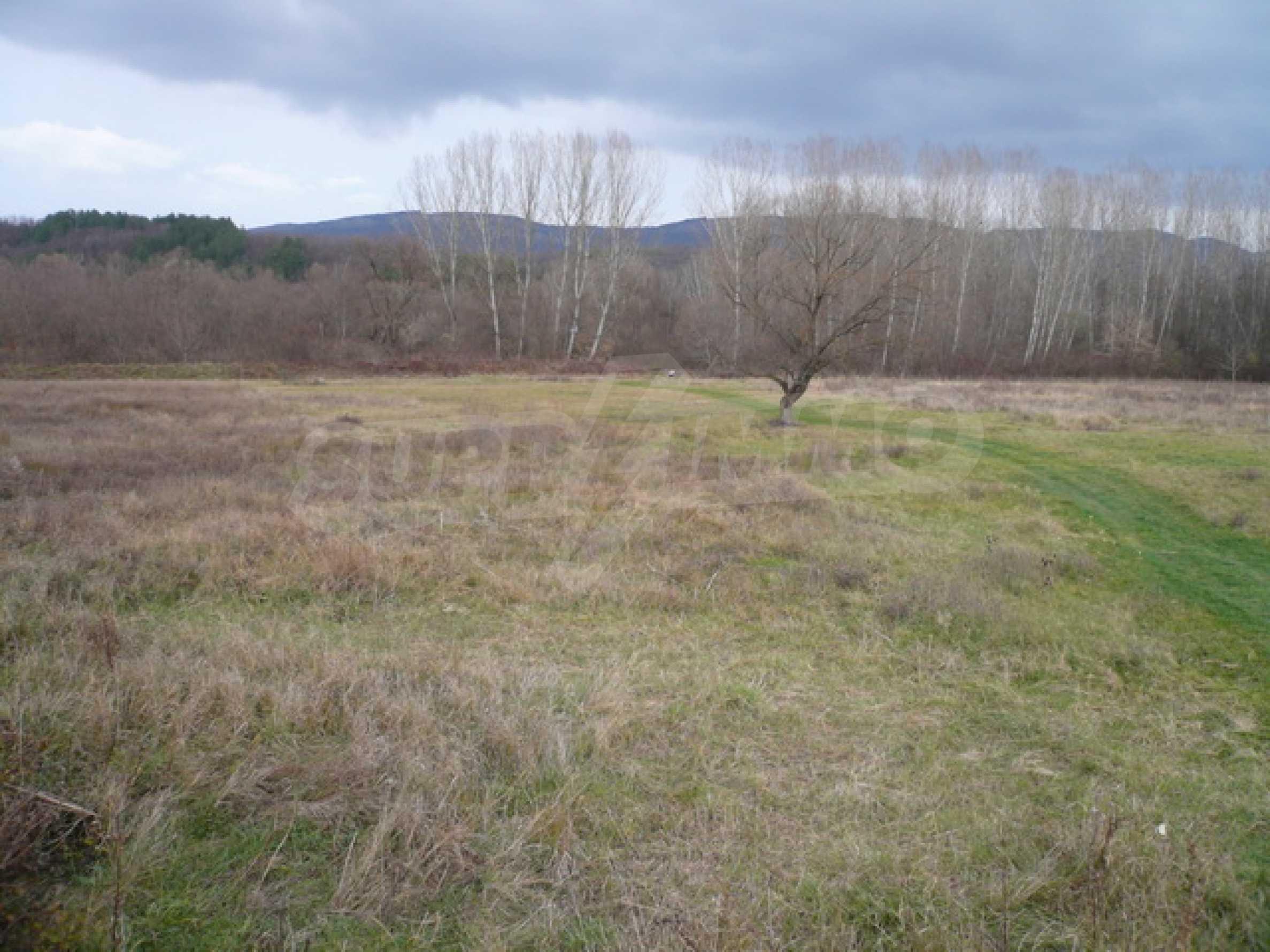 Grundstück in der Nähe der Hauptstraße Gabrovo-Sevlievo 6