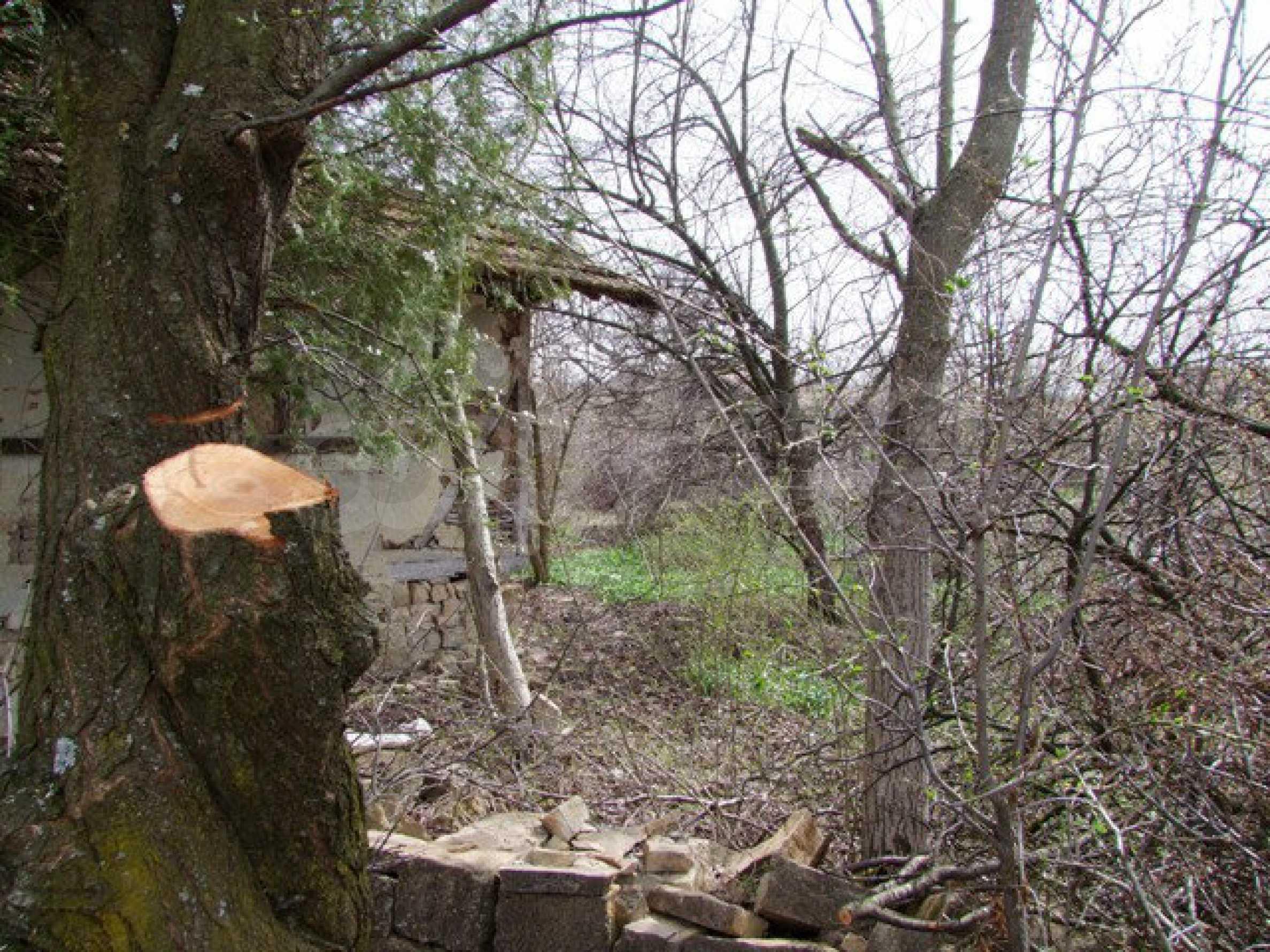 Schnäppchenanwesen mit großem Garten 11