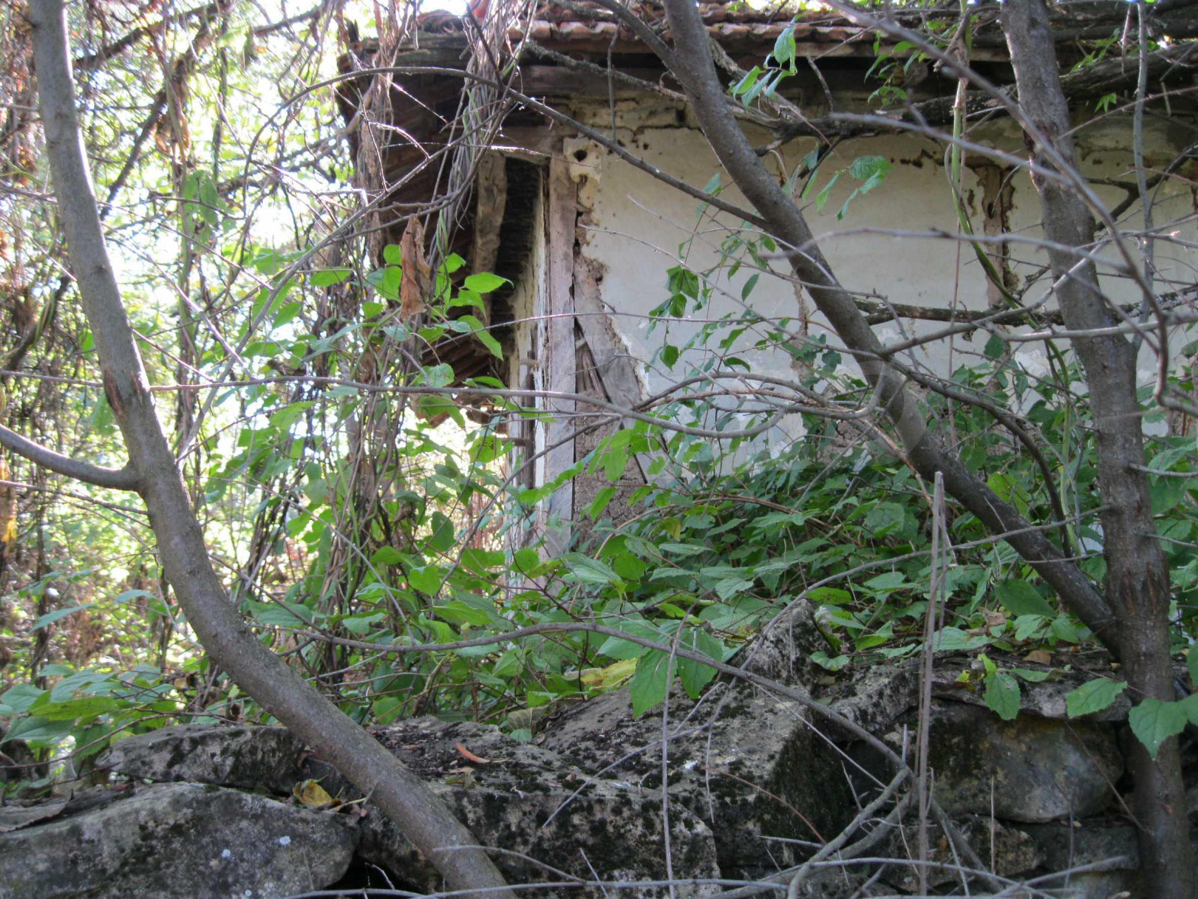 Schnäppchenanwesen mit großem Garten 4