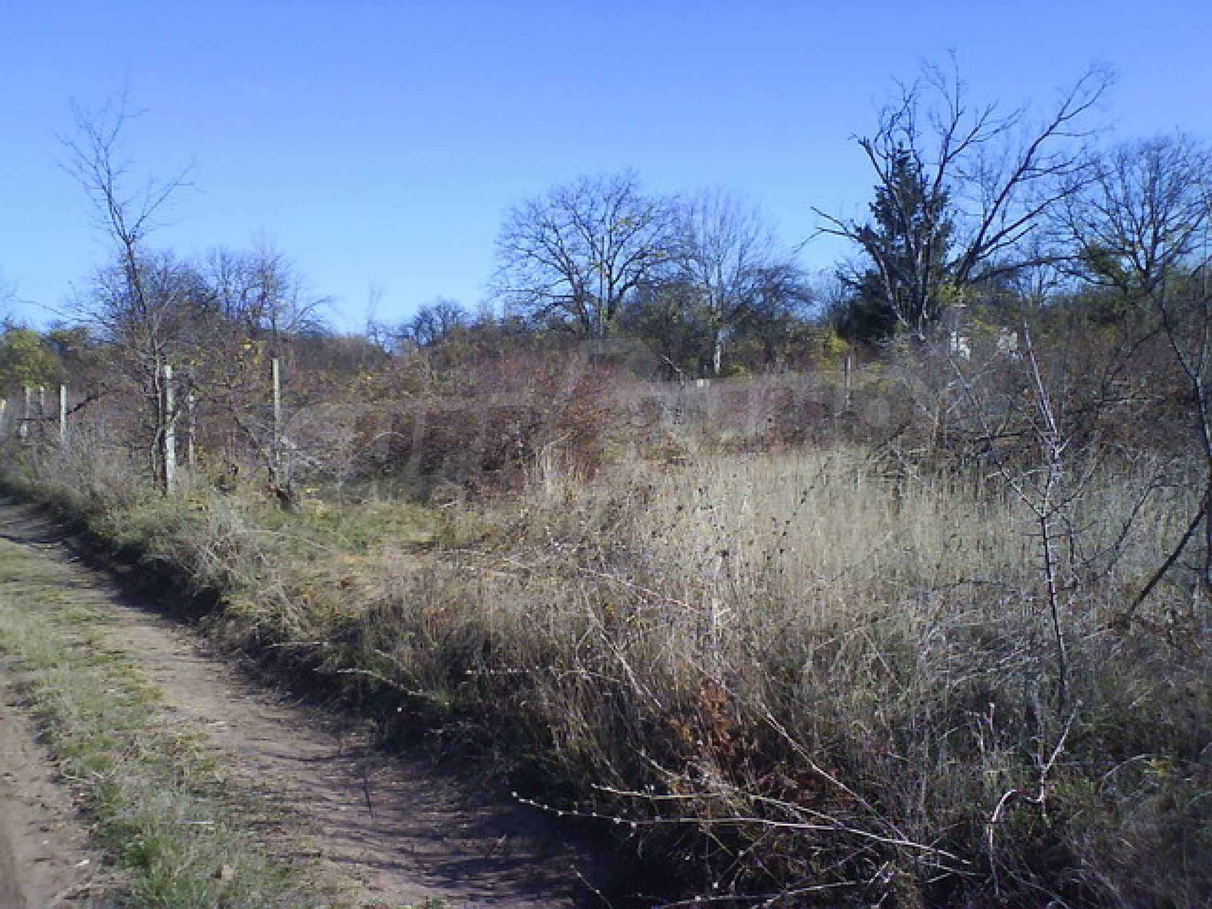 Земельный участок в г. Велико Тырново 11