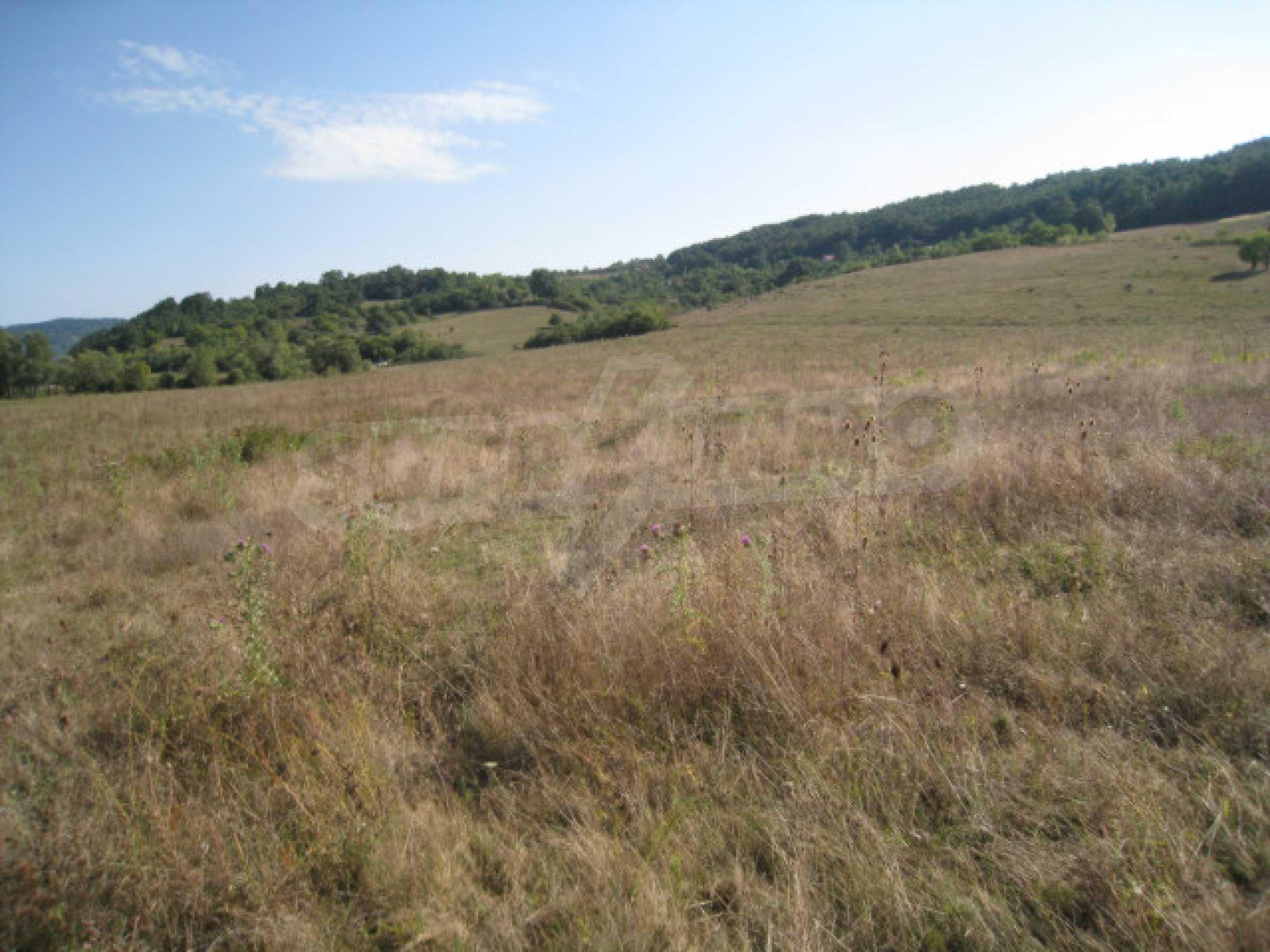 Продажа земли вблизи г. София 16