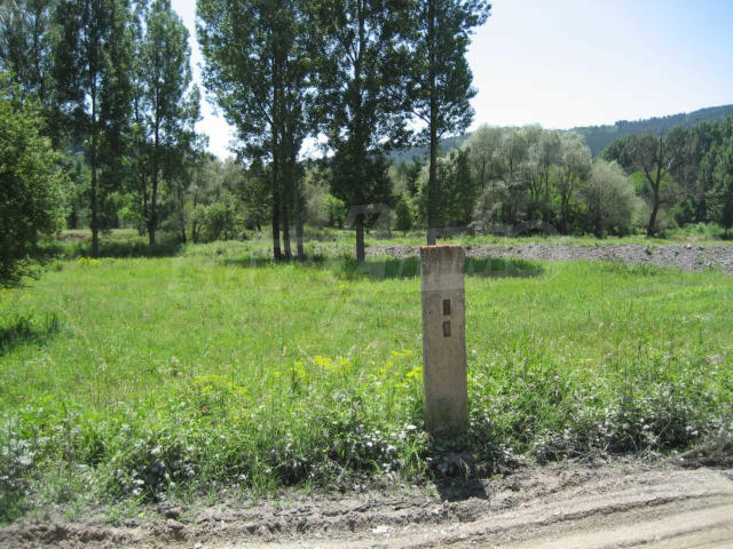 Продажа земли вблизи Софии 12