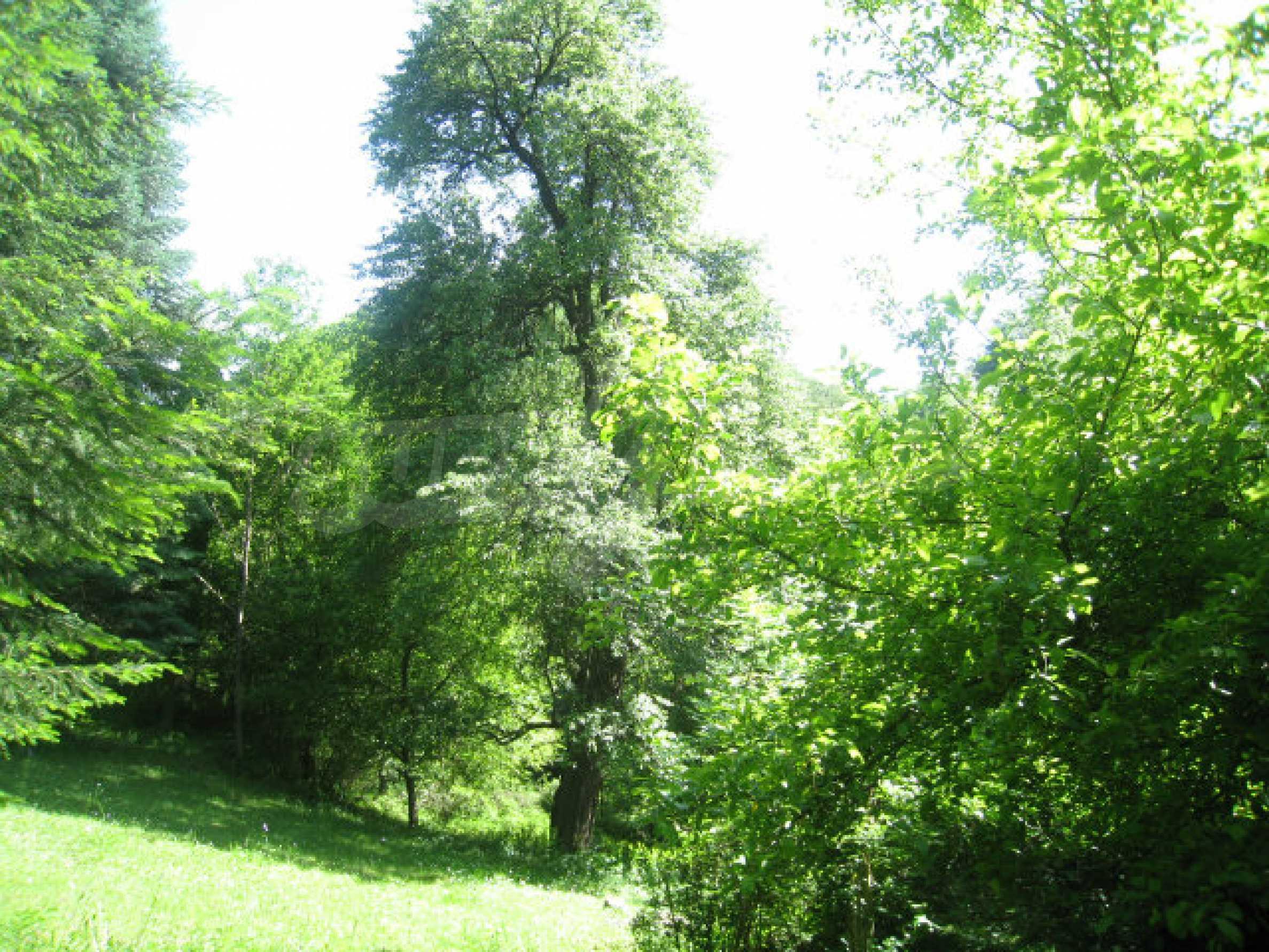 Development land in village 48 km from Svoge 22