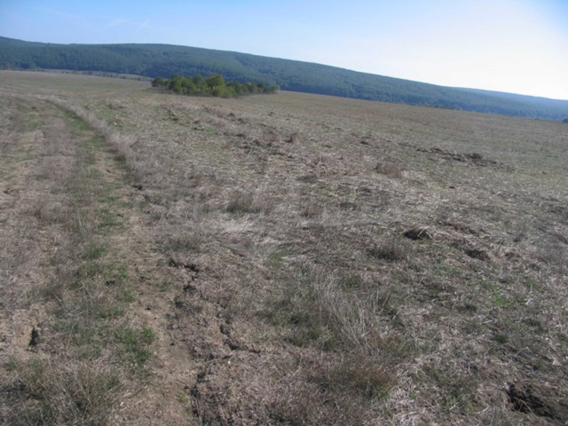 Development land for sale in Rudnik village 1