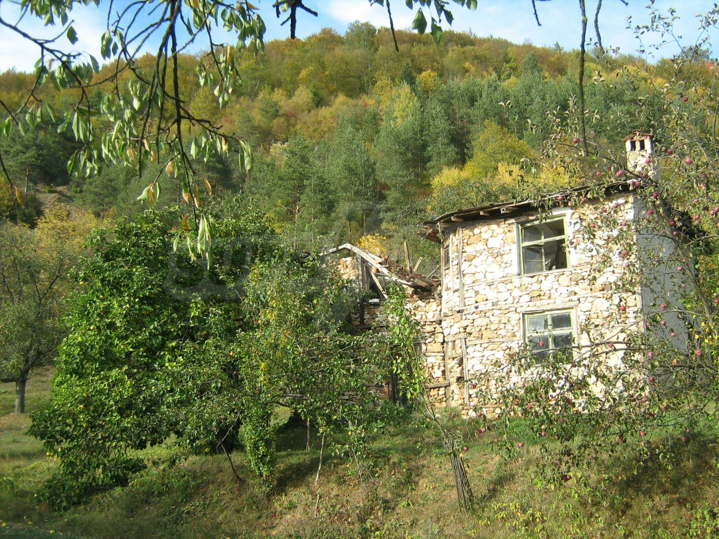 Picturesque regulated plot for private house near Smolyan 7