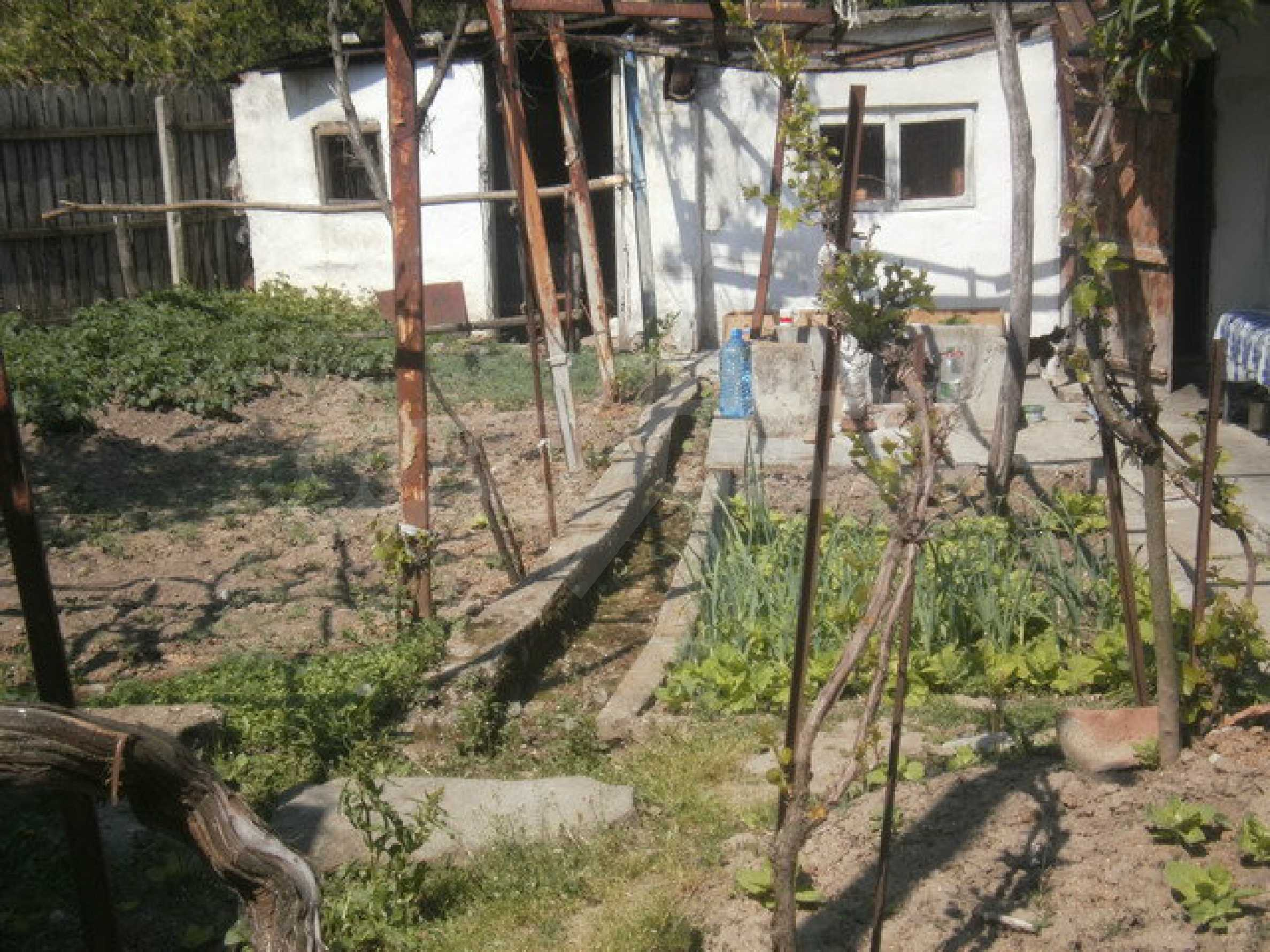 Town house with a yard on the river bank in Elena 4