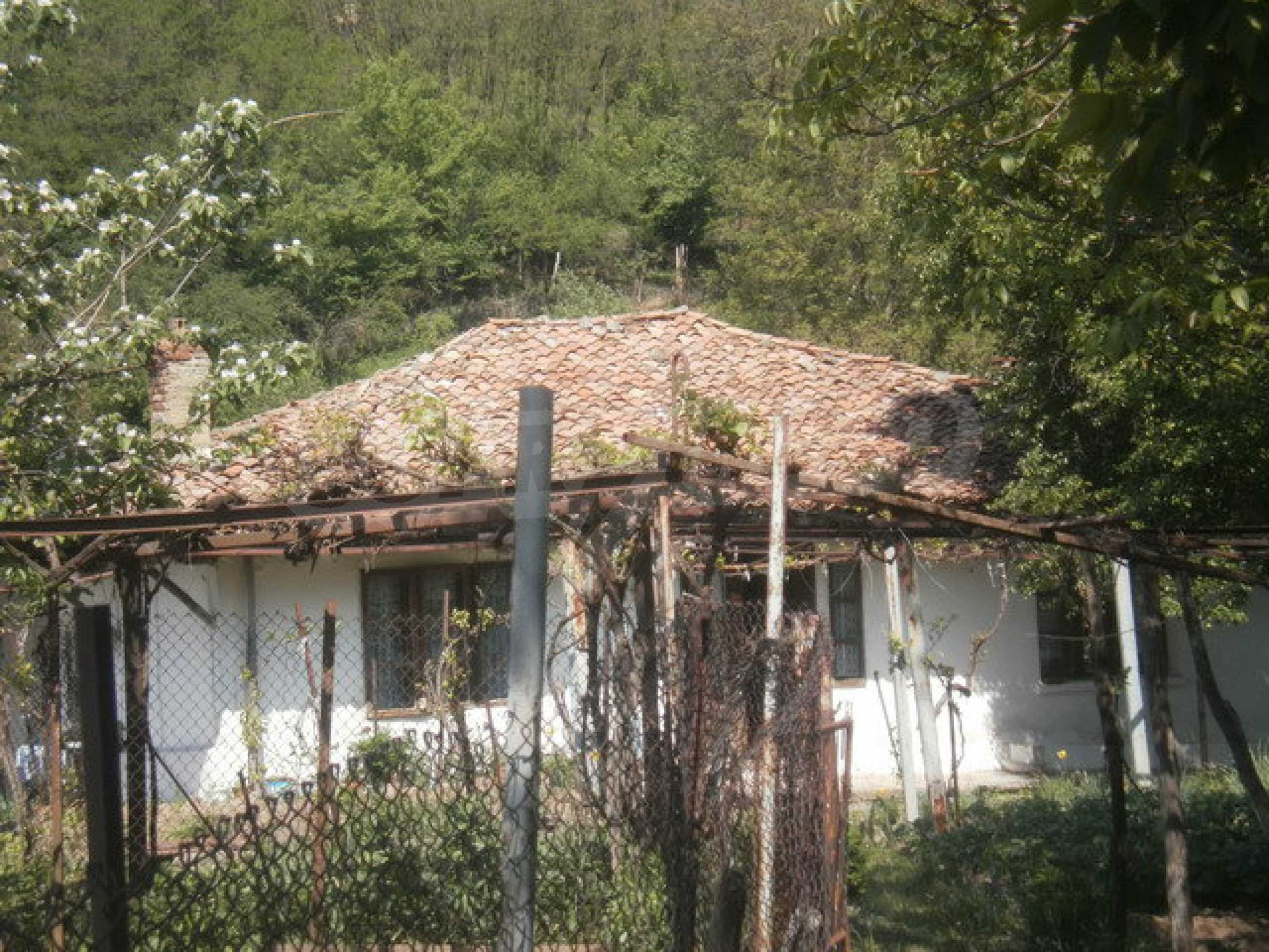 Town house with a yard on the river bank in Elena 5