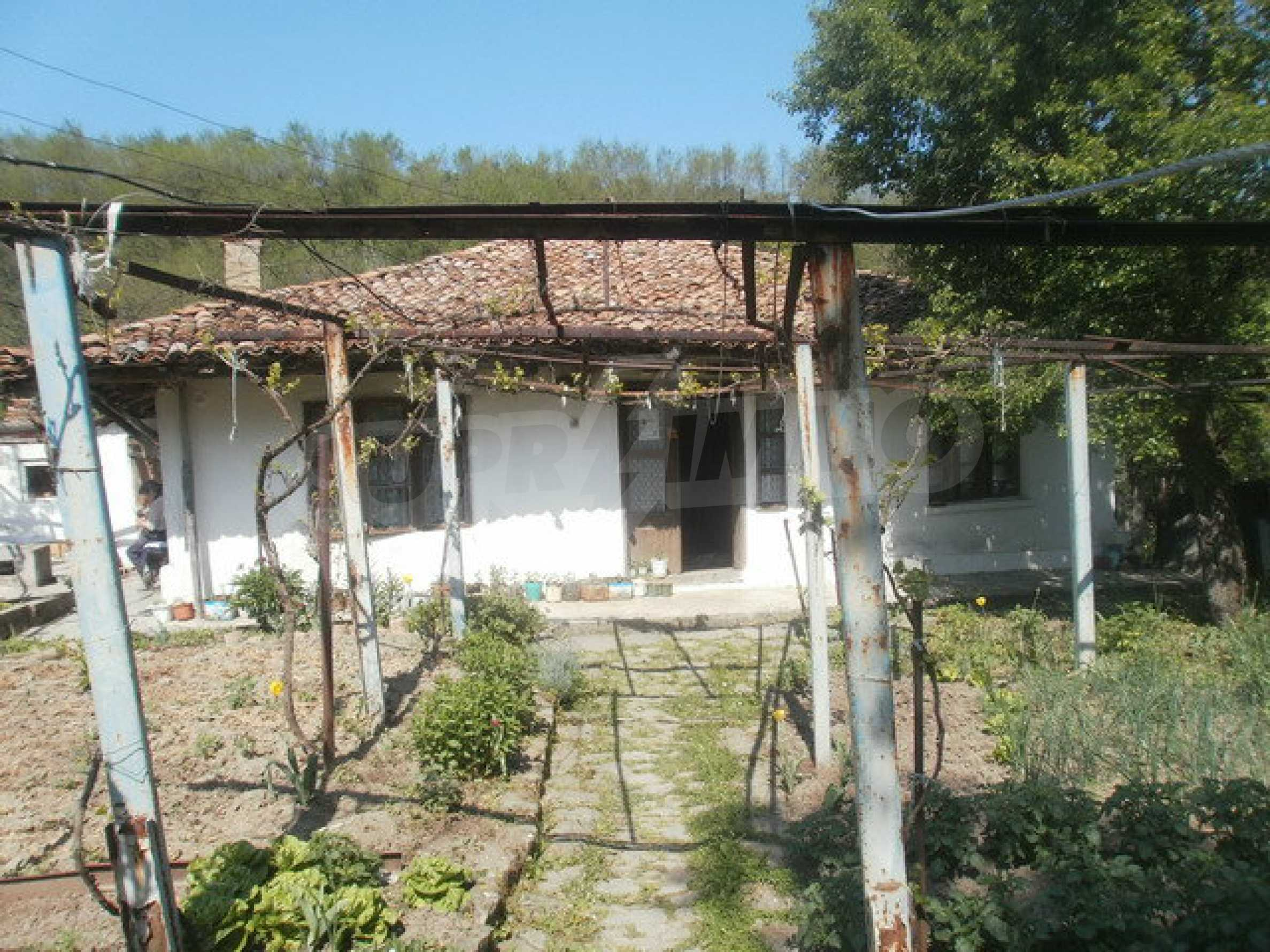 Town house with a yard on the river bank in Elena 7