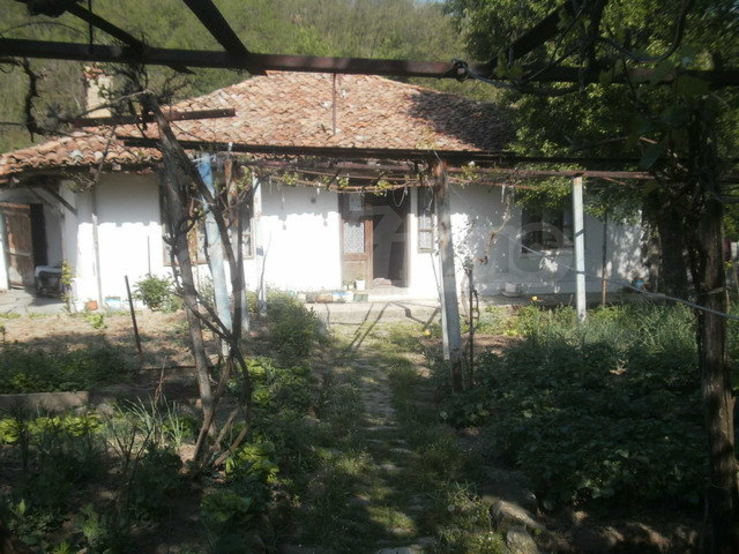 Town house with a yard on the river bank in Elena 8
