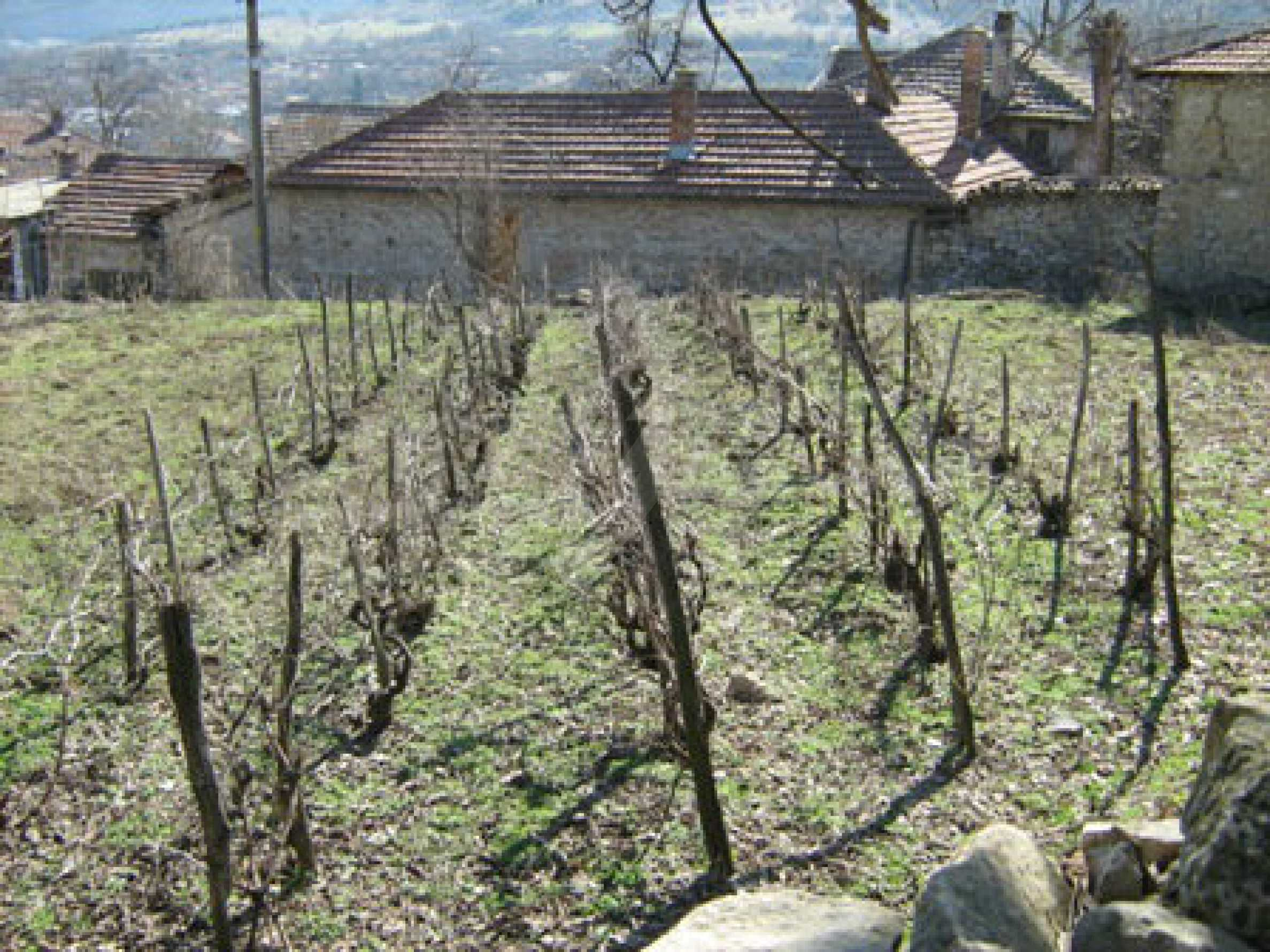 Old authentic house with large garden near Veliko Tarnovo 9