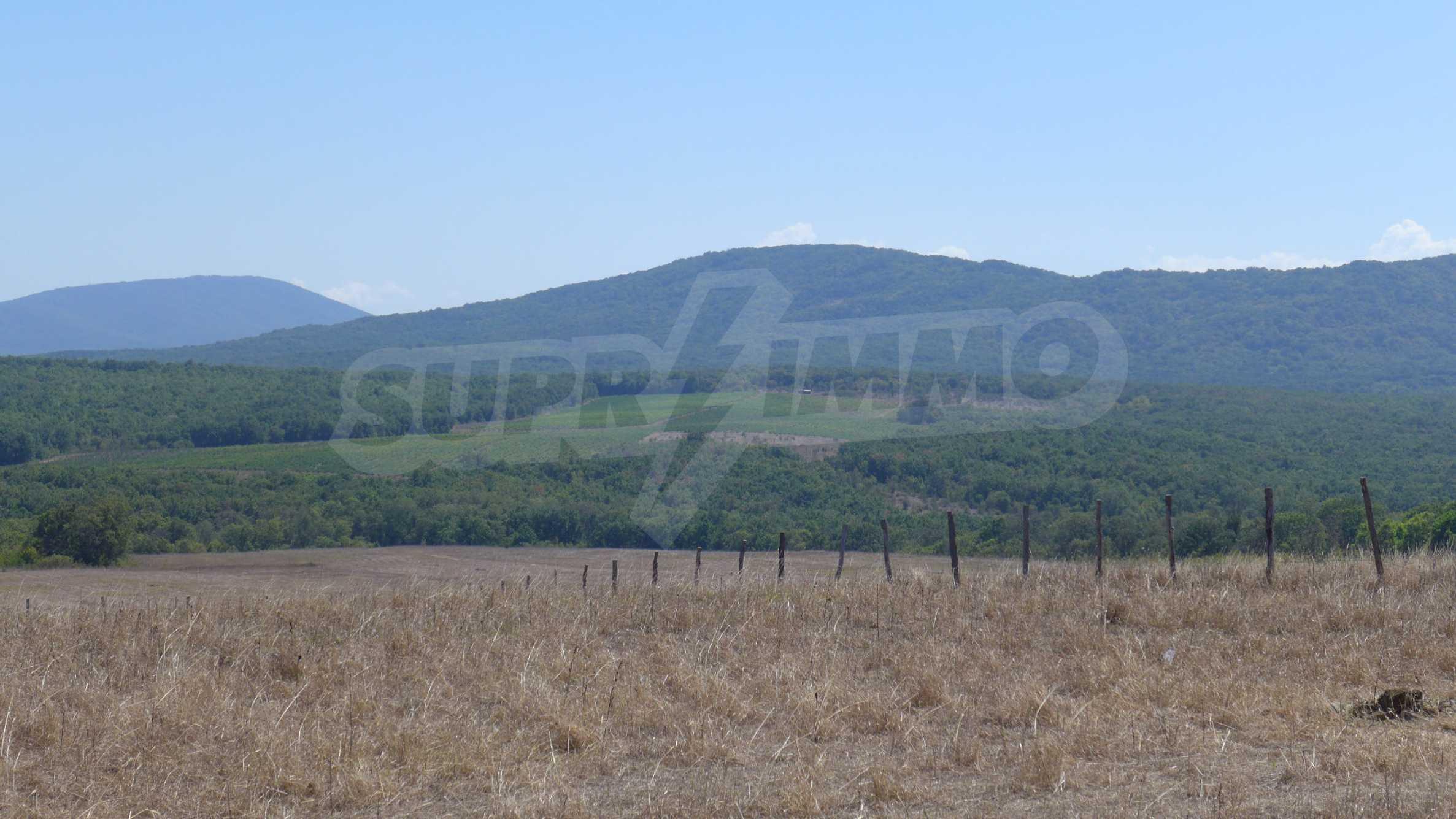Geregeltes Grundstück in der Nähe des Dorfes Lozenets 9