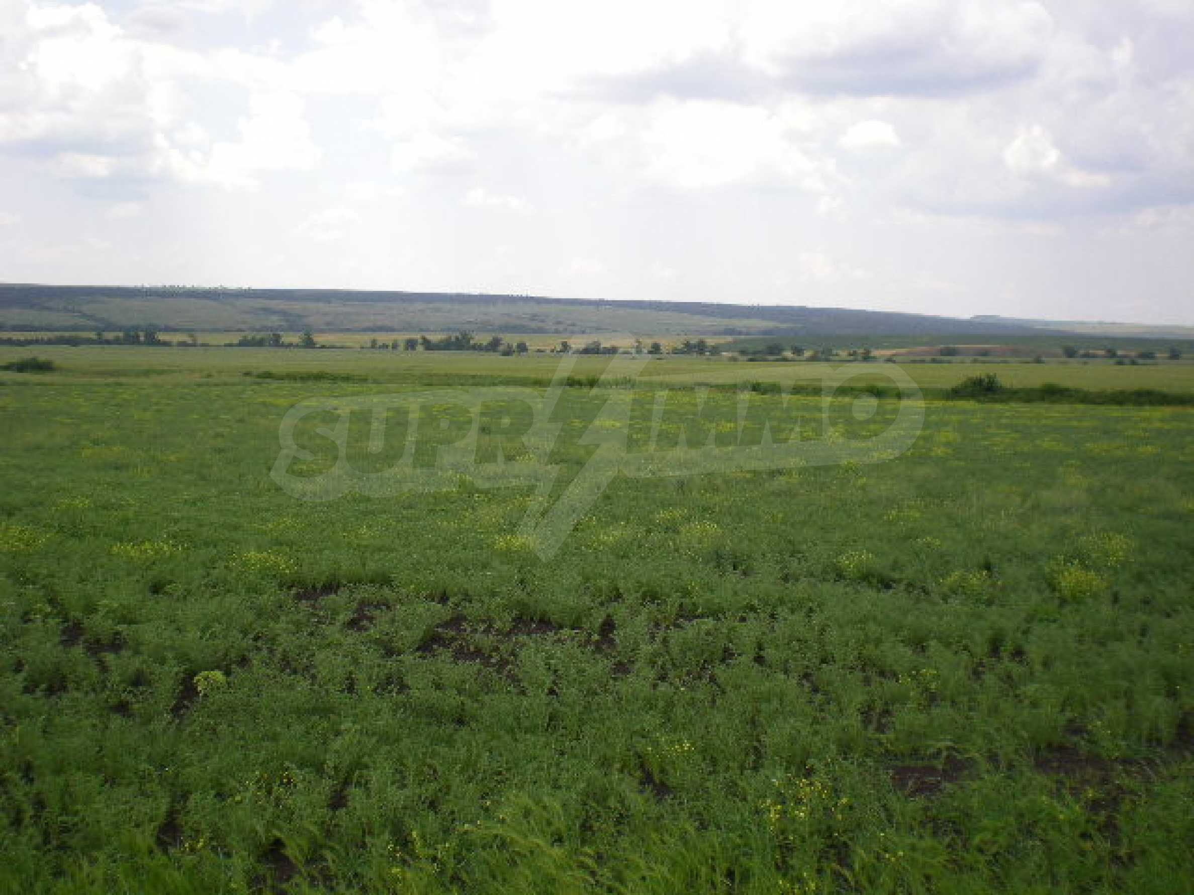 Huge plot of agricultural land near the motorway.