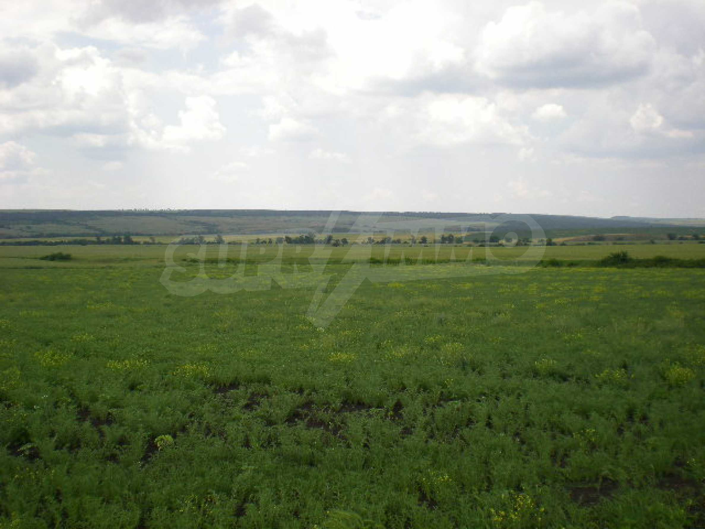 Huge plot of agricultural land near the motorway. 2