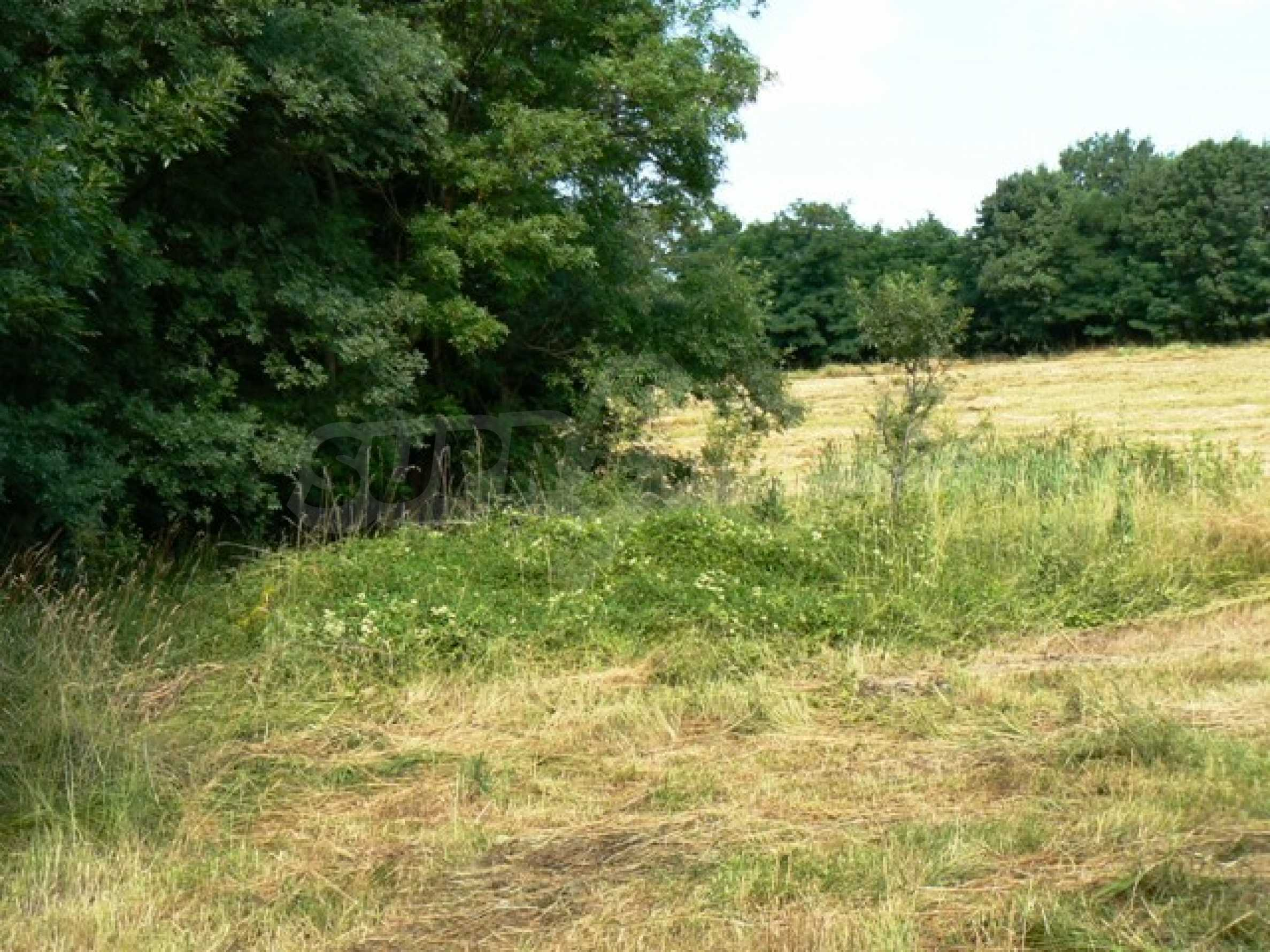 Plot of land in Bankya 6