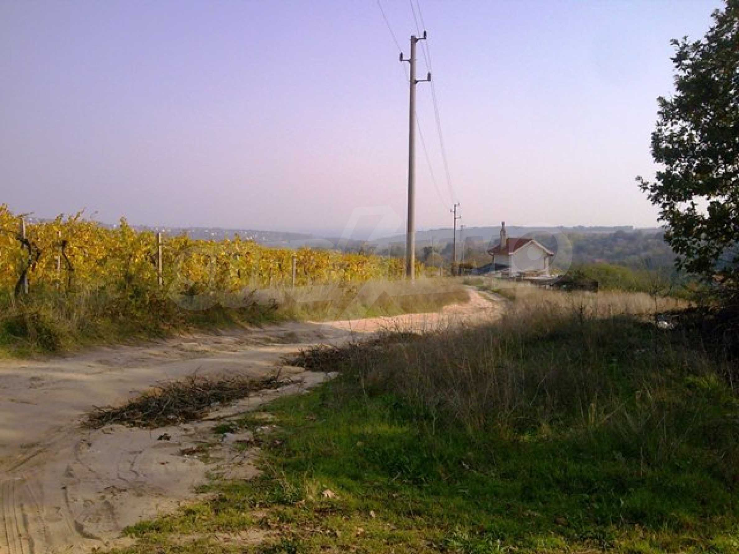 Agricultural land for sell near Varna
