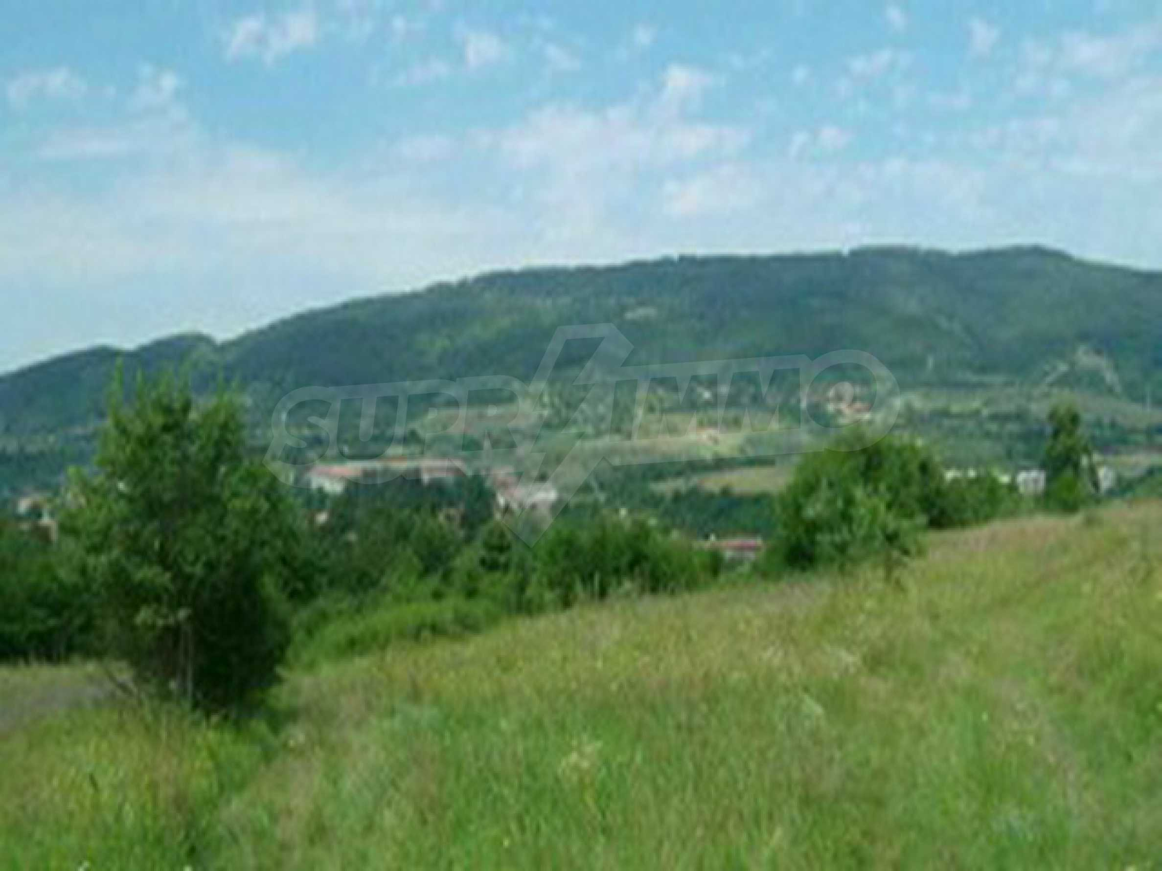 Land in Elena town