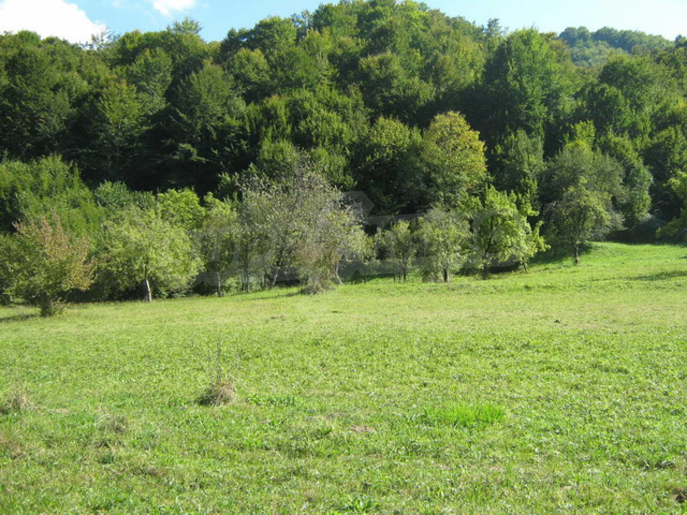 Large plot of land in Ribaritsa 2