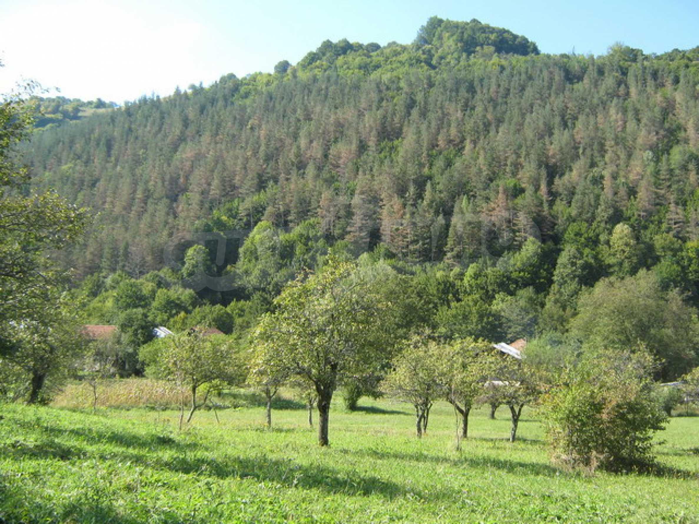 Large plot of land in Ribaritsa 5