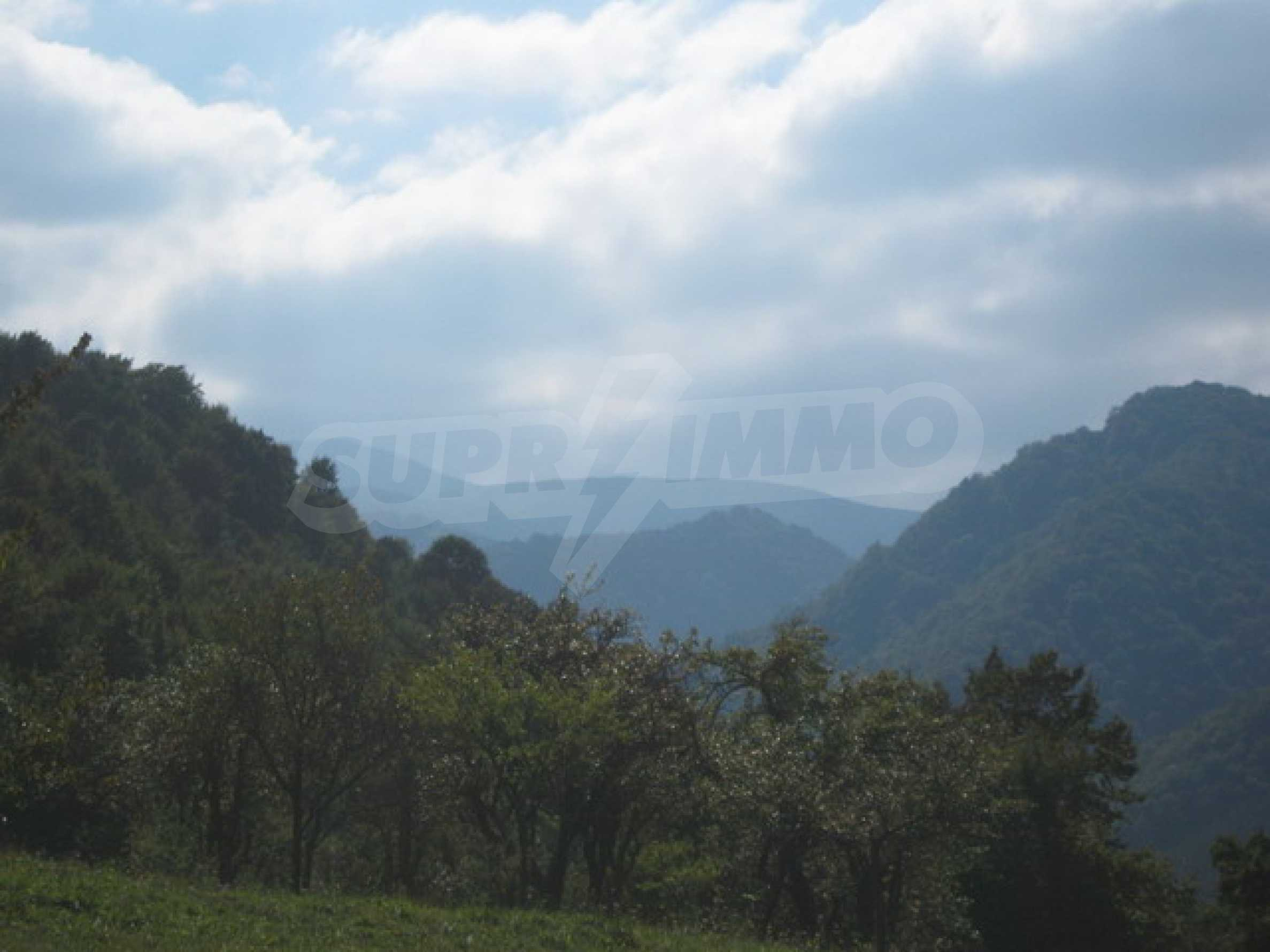 Large plot of land in Ribaritsa 8