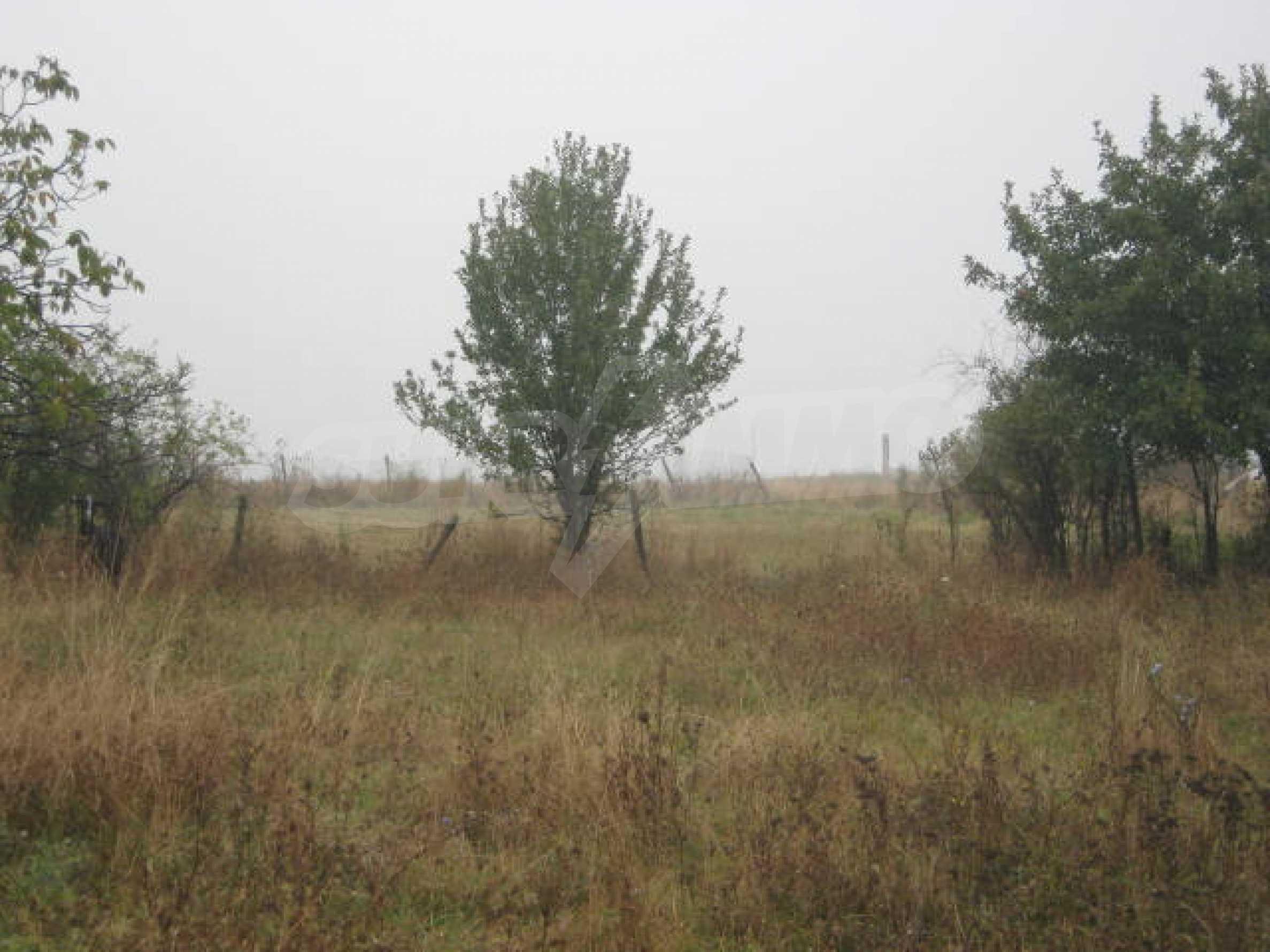 Продажа земли вблизи г. Видин 5
