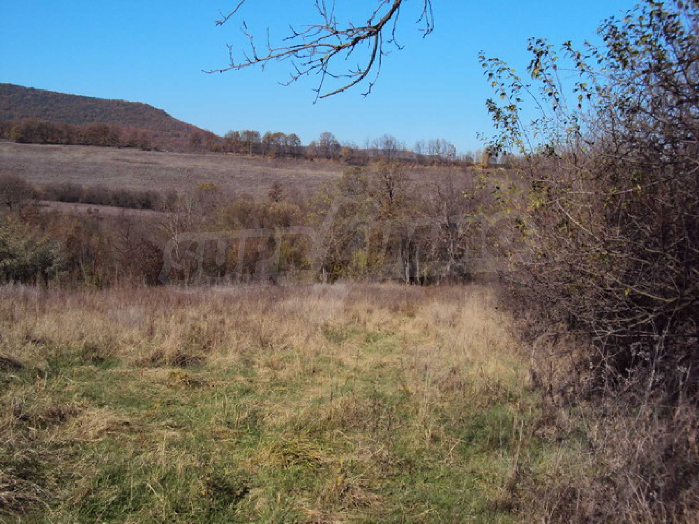 Regulated land for sale! 5