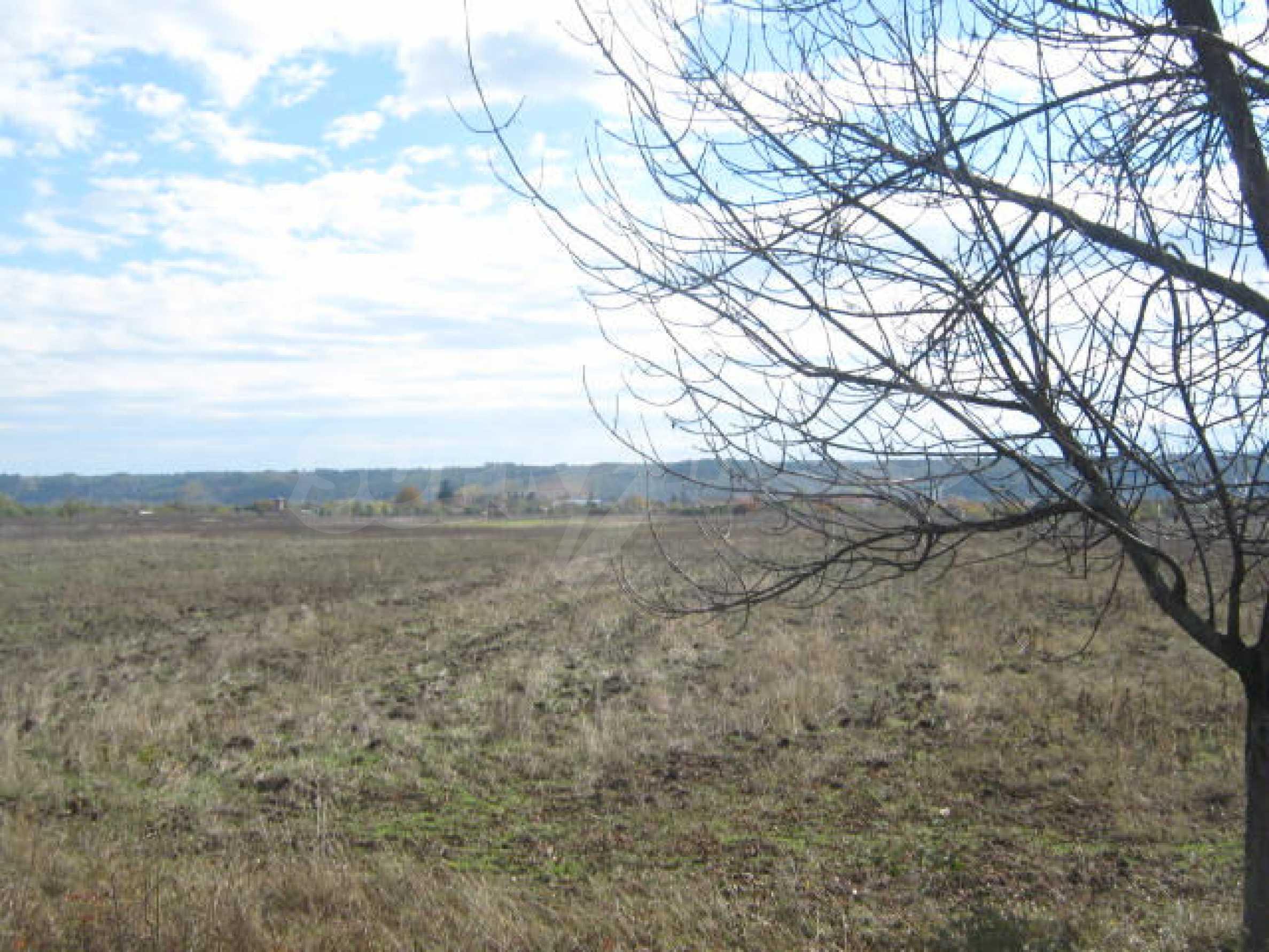 Продажа земли недалеко от г. Видин 1