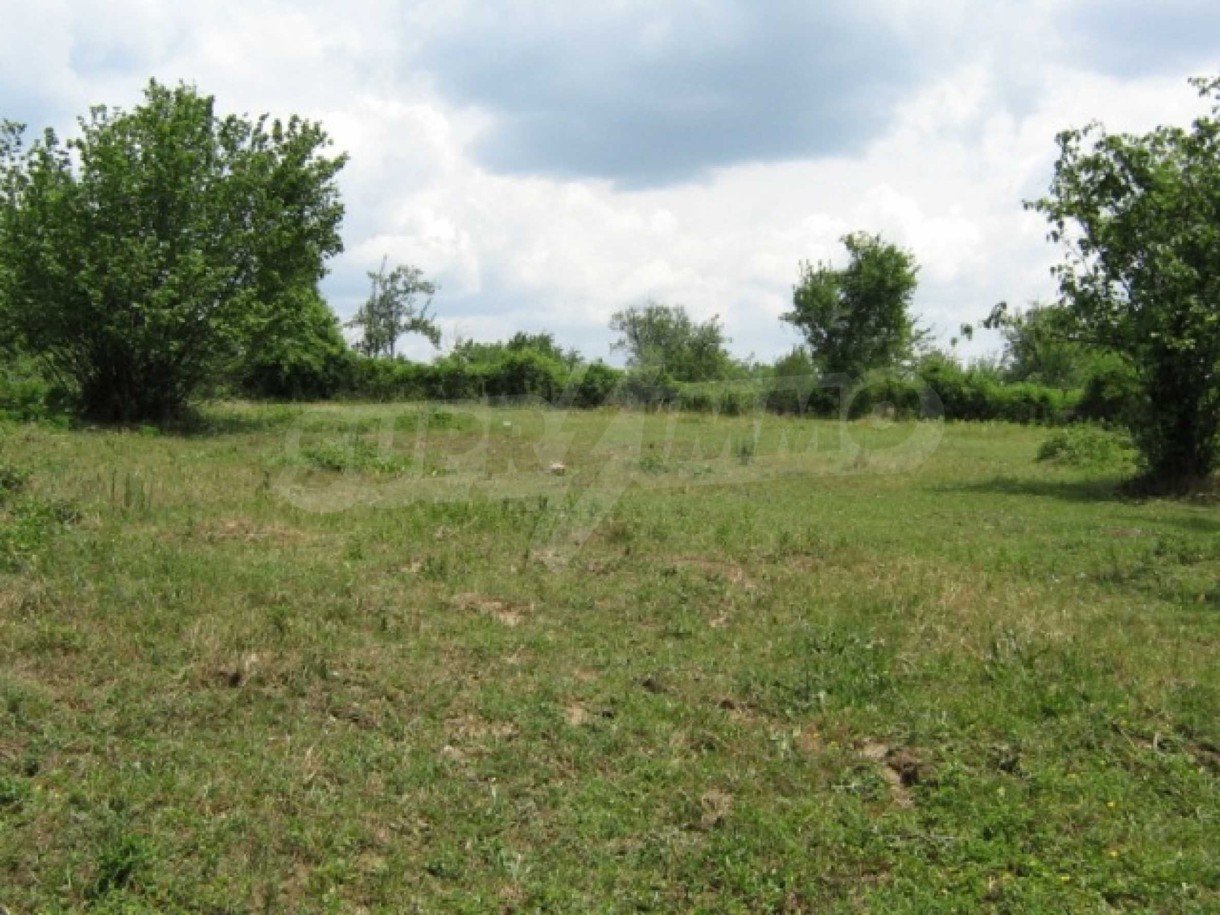 A regulated plot for sale in the village of Markovo