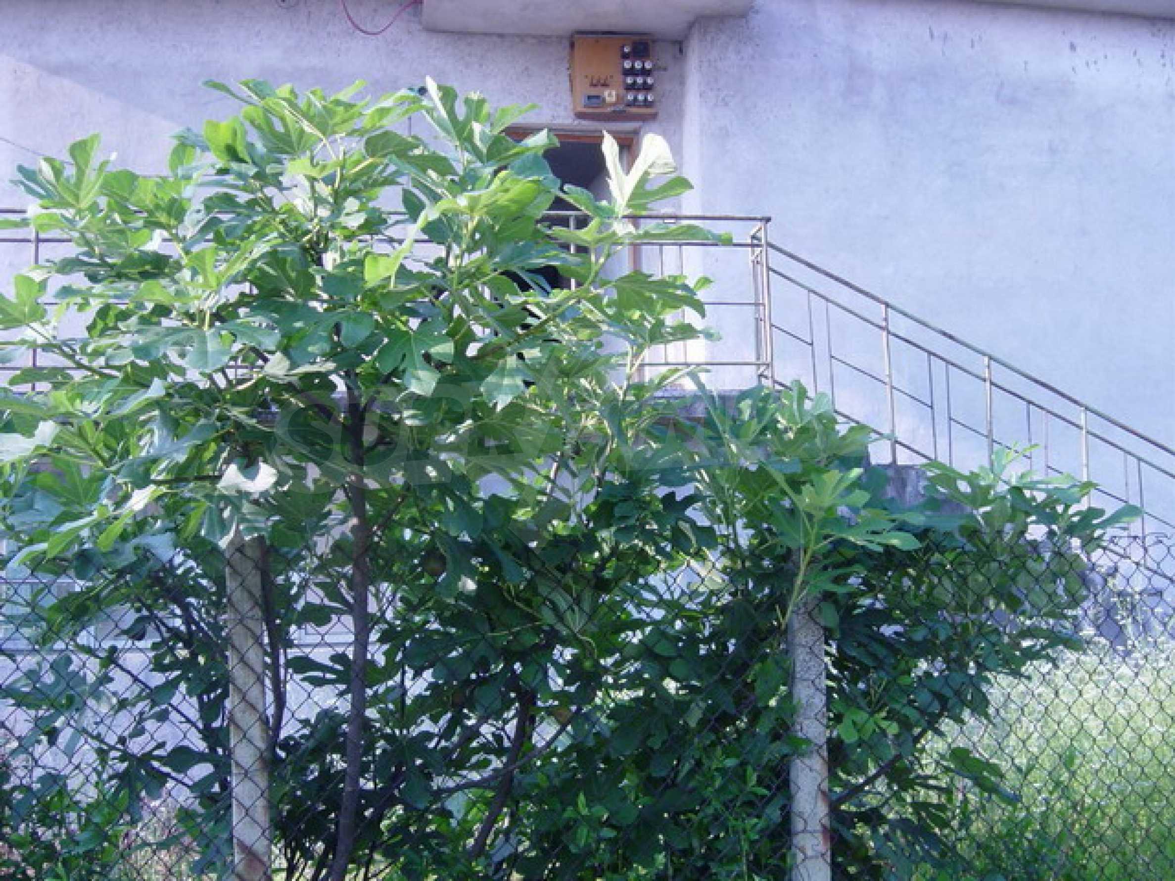 Массивный дом находится в 8 км от города Стражица 3