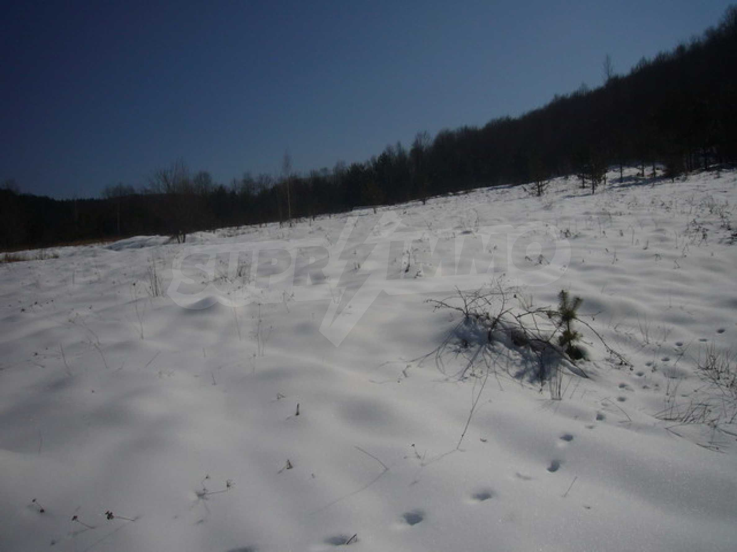 Land for sale near Apriltsi town 1