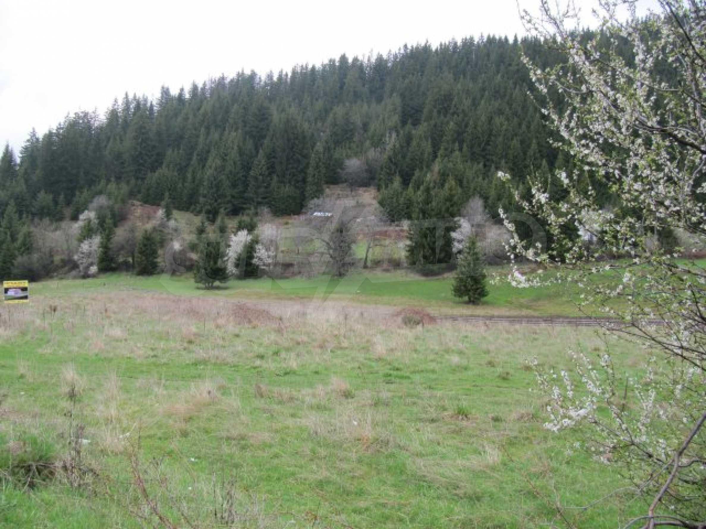 Земельный участок в г. Смолян, в 10 км от Пампорово 4