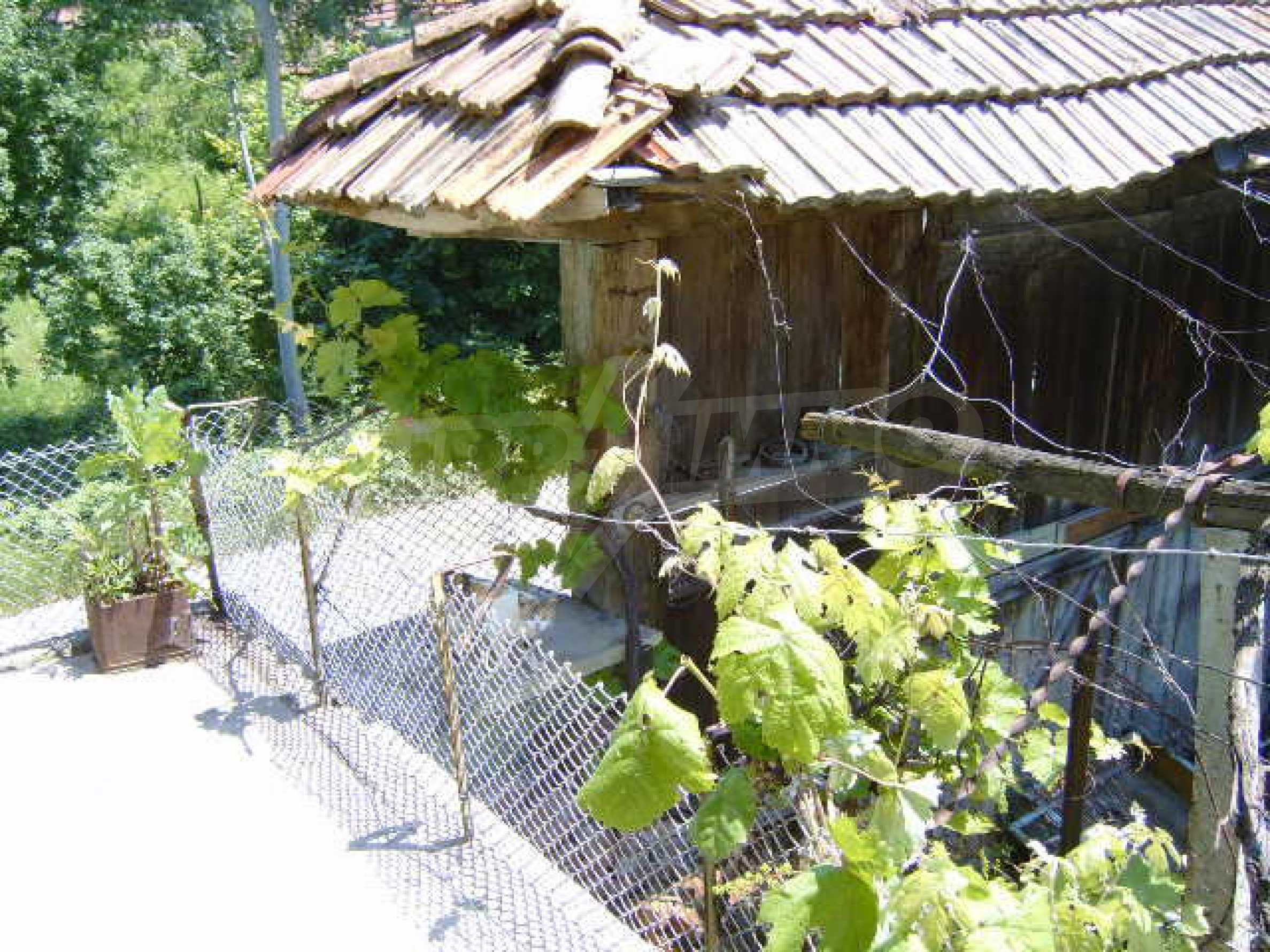 A lovely, typically rural house 20 km. from Veliko Tarnovo 9