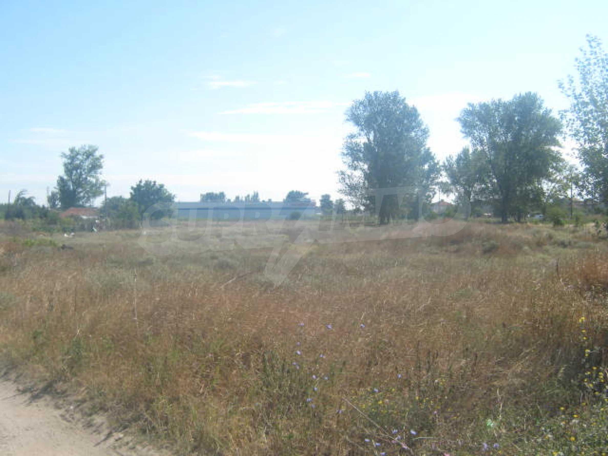 Two plots near the center of Vidin