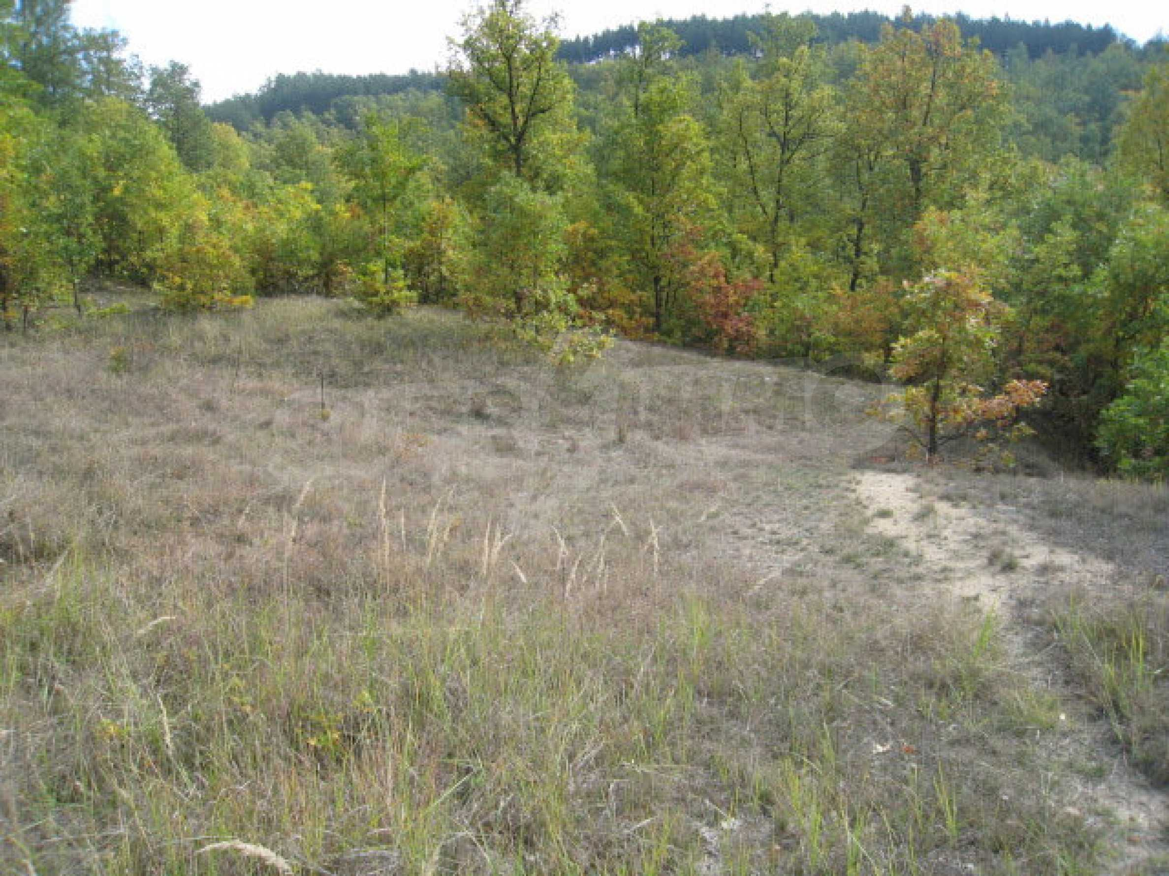 Development land near the town of Kostenets
