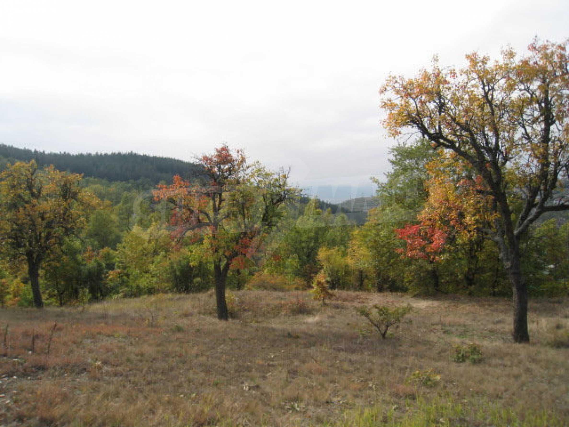 Development land near the town of Kostenets 13