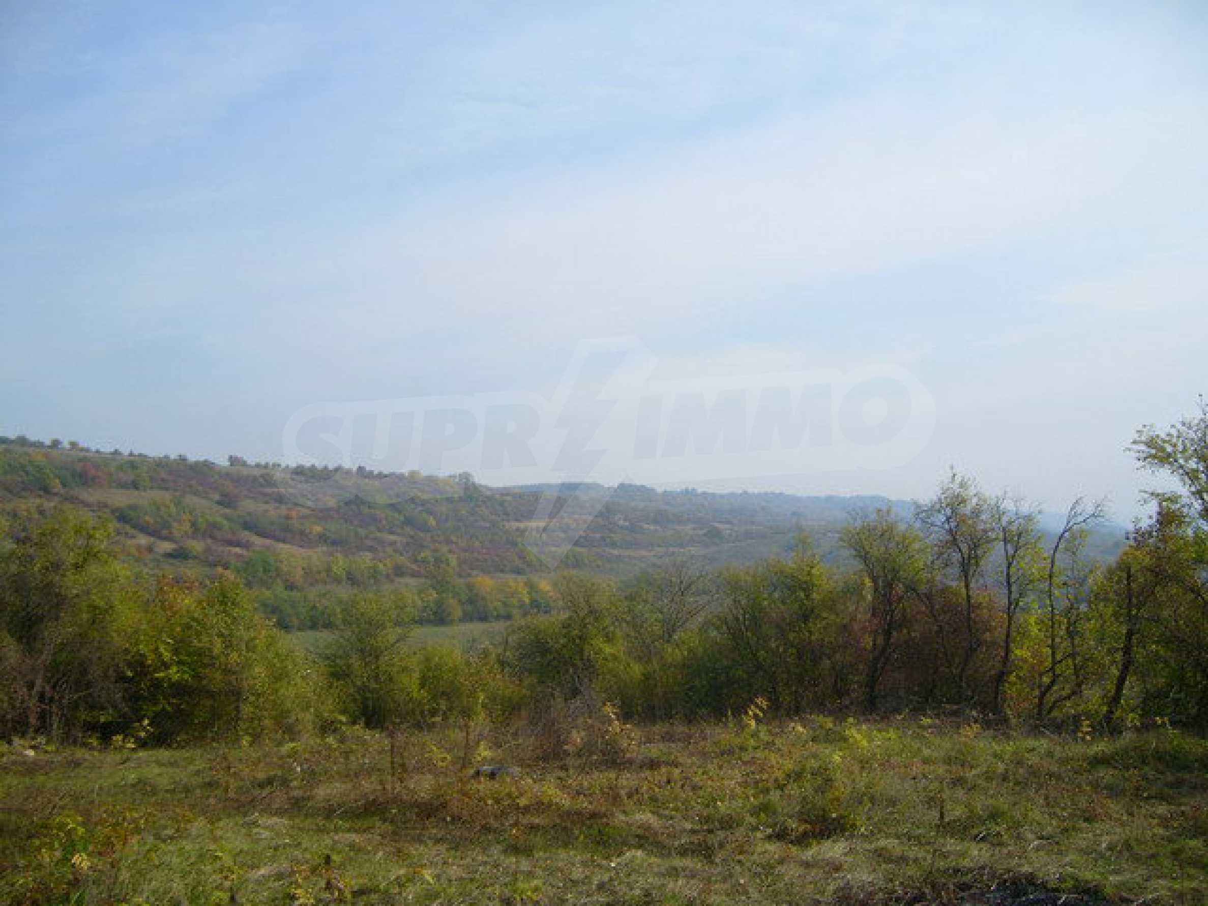 Regulated plot of land in a village with beautiful scenery  9