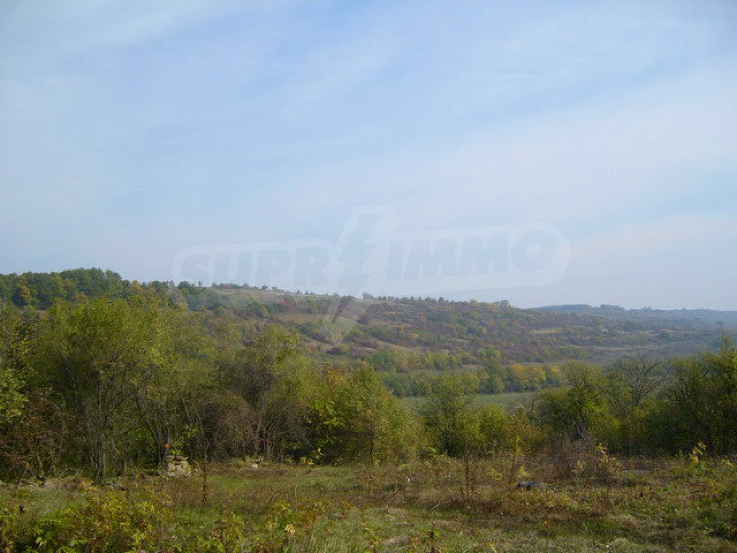 Regulated plot of land in a village with beautiful scenery  10