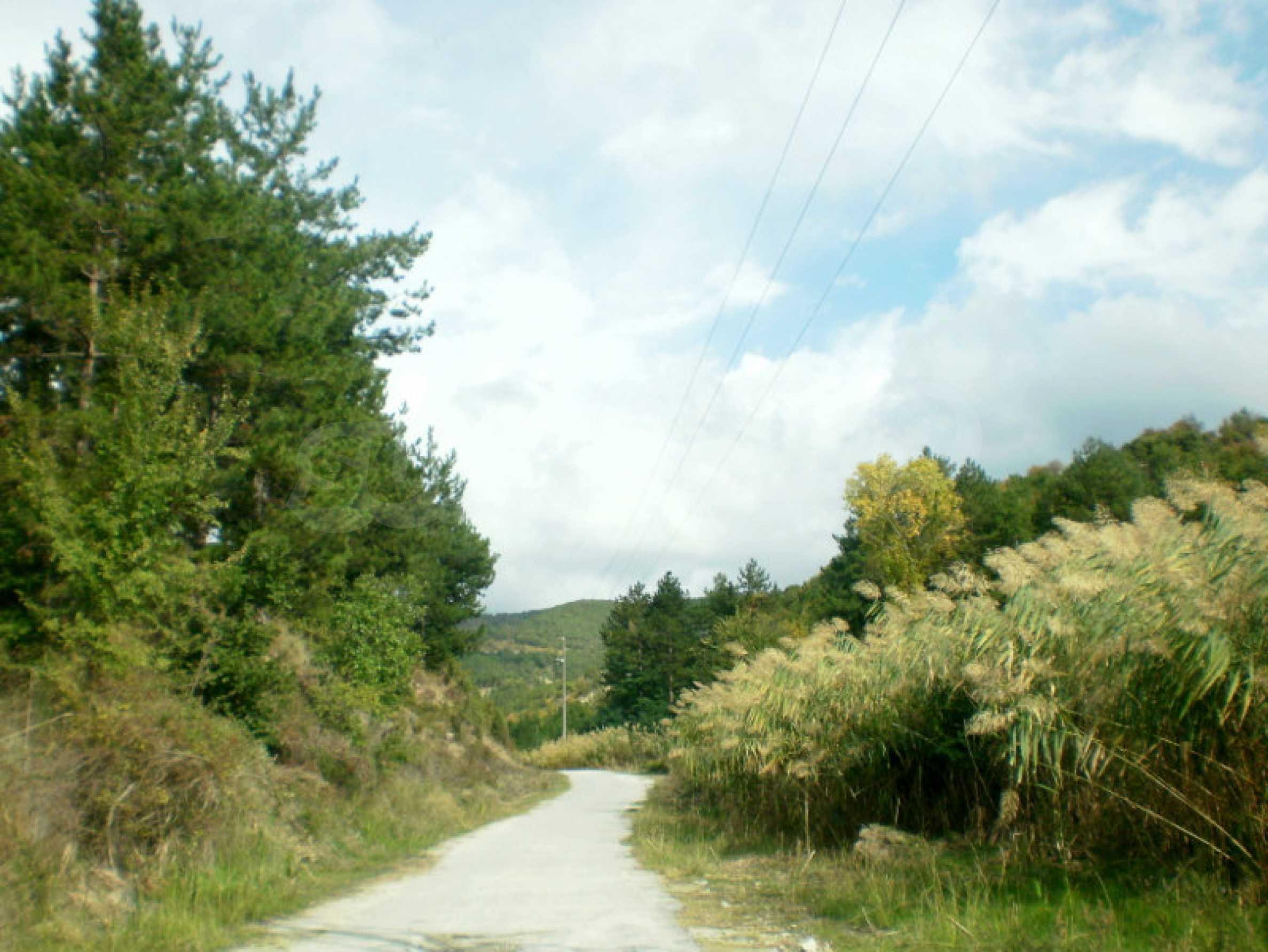 Участок возле Градешки минеральных источников  2