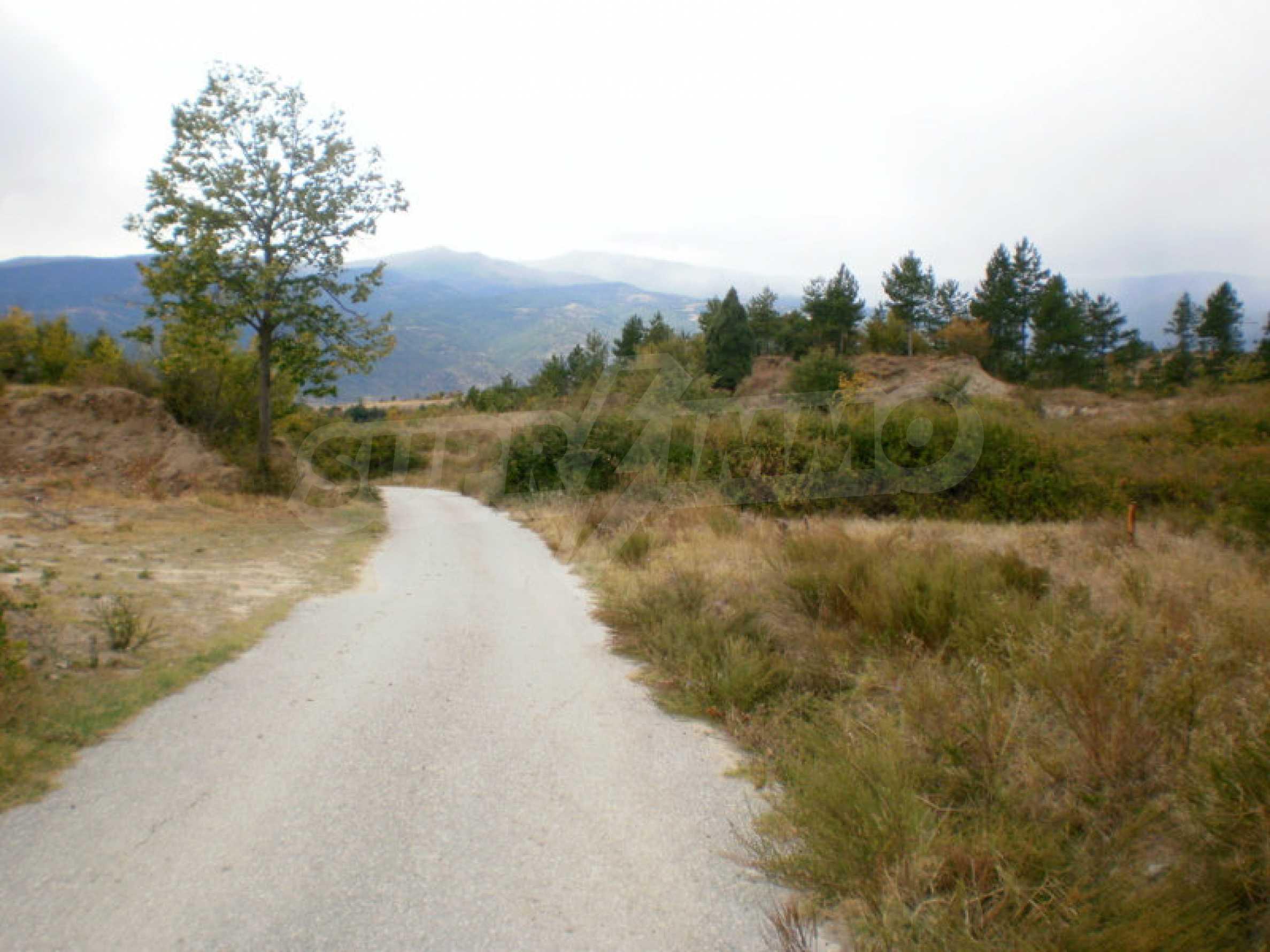 Участок возле Градешки минеральных источников  6