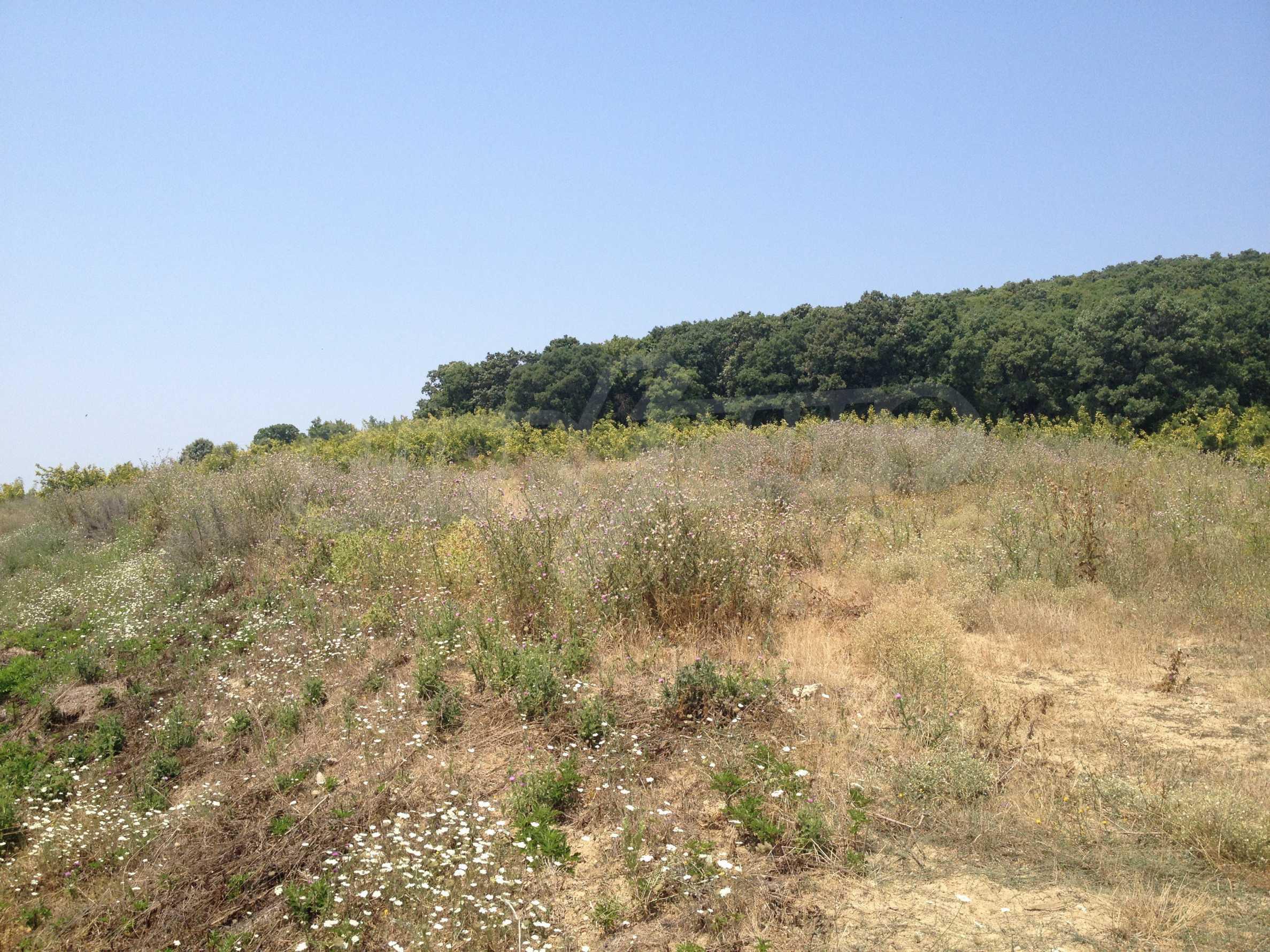 Land for sale near Sunny Beach 5