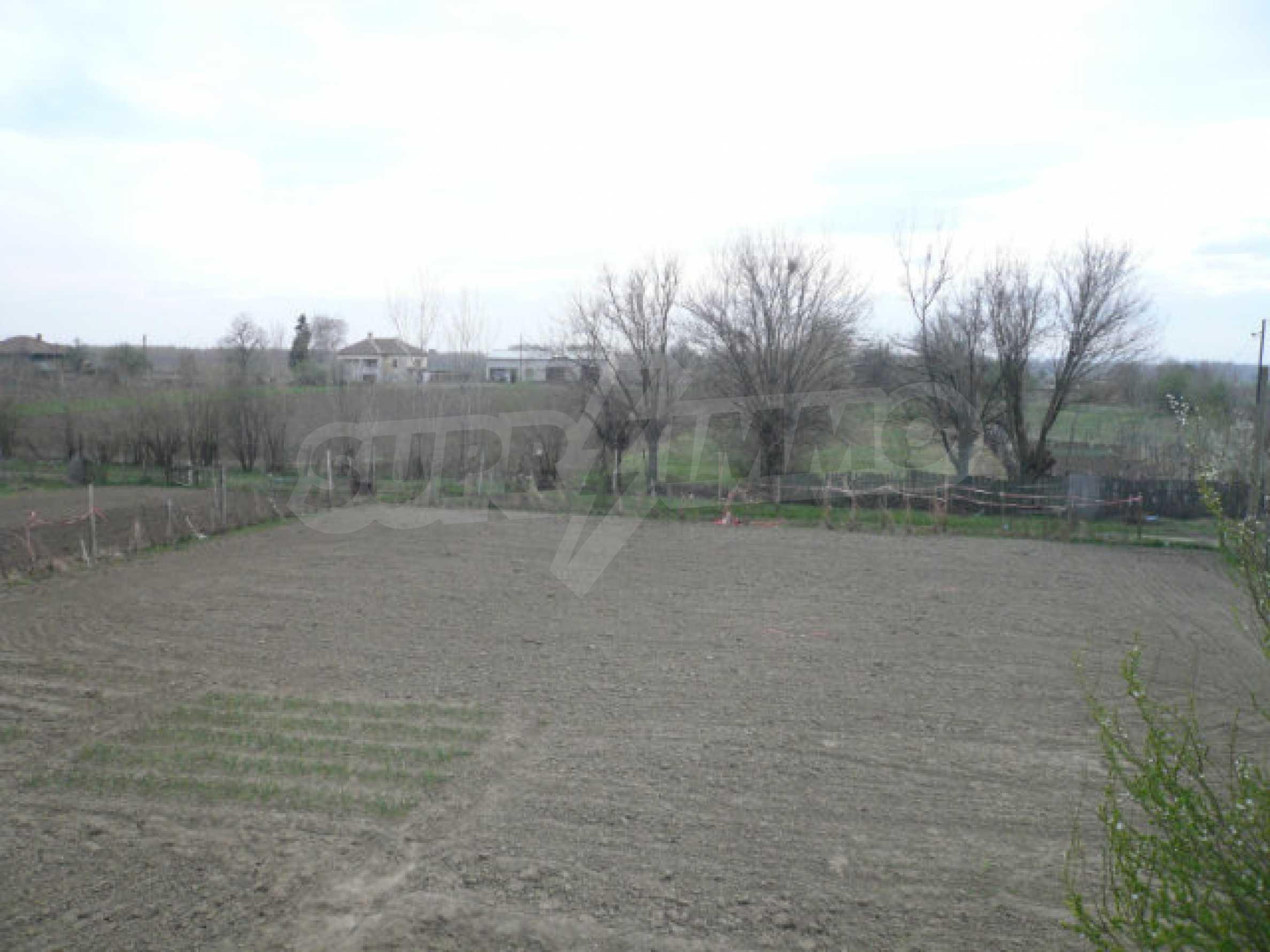 House near Vidin 13