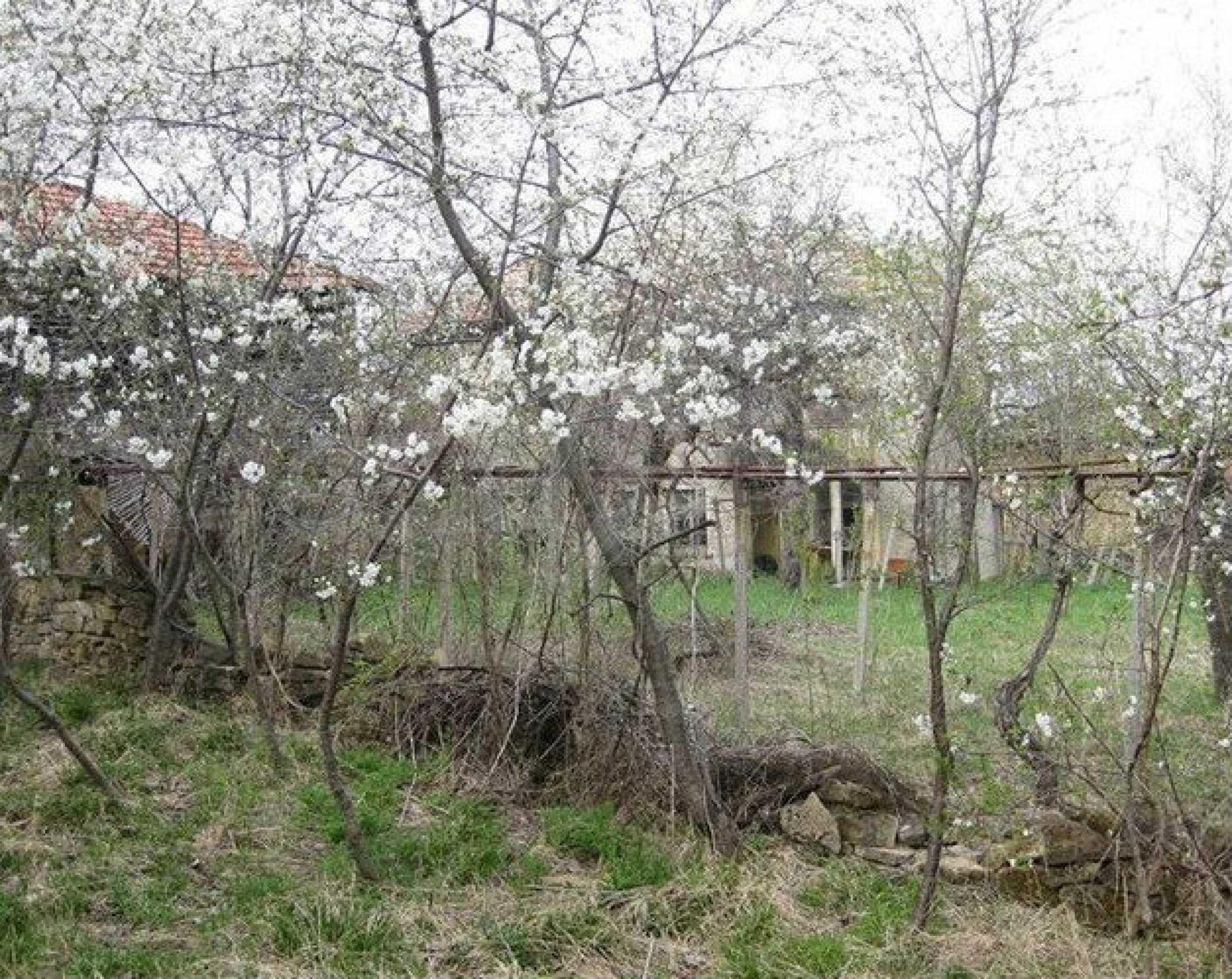 Двуетажна  къща с  голям двор в село на 30 км от В.Търново  6