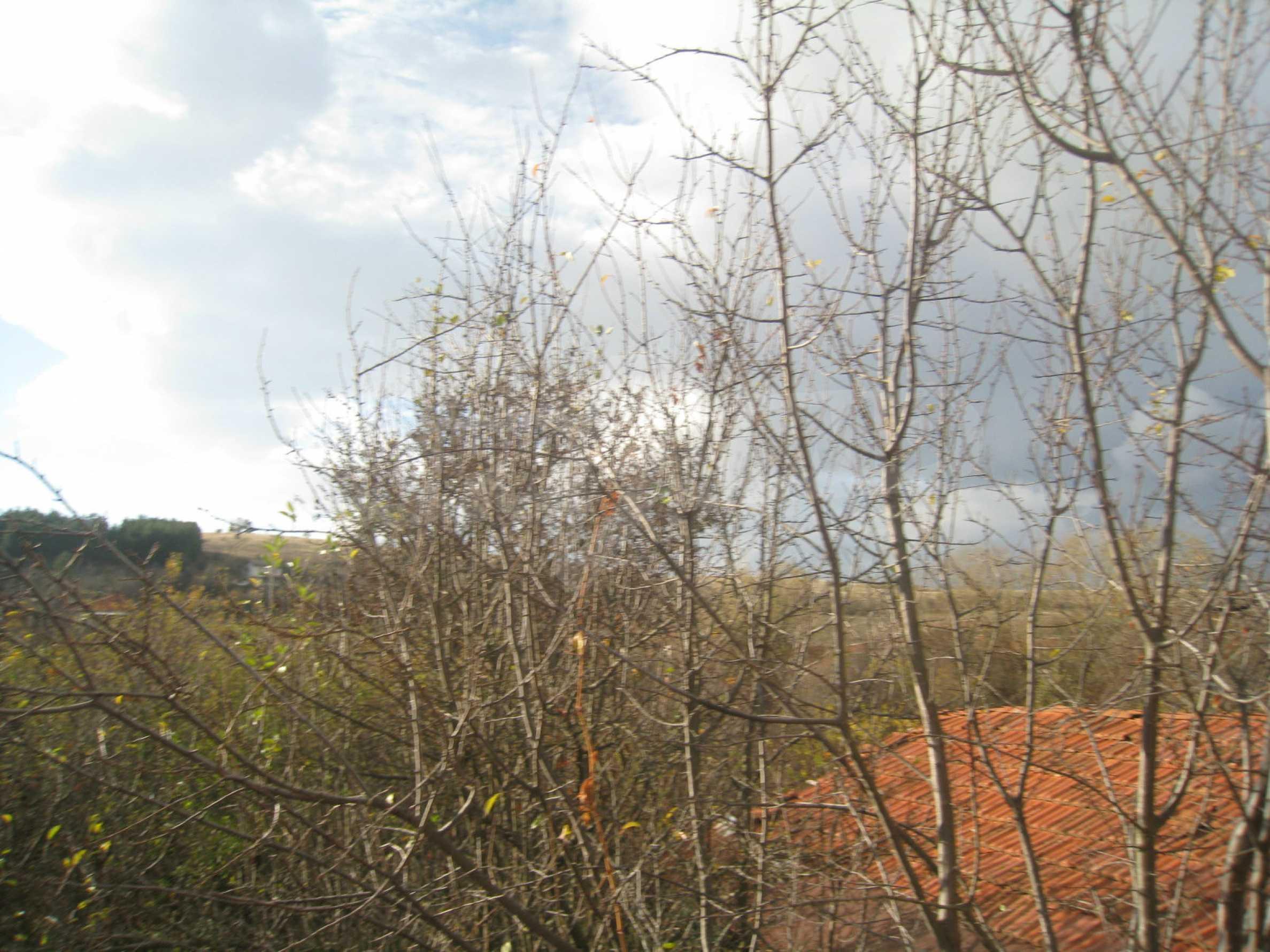 Дом на продажу недалеко от города Кюстендил 35
