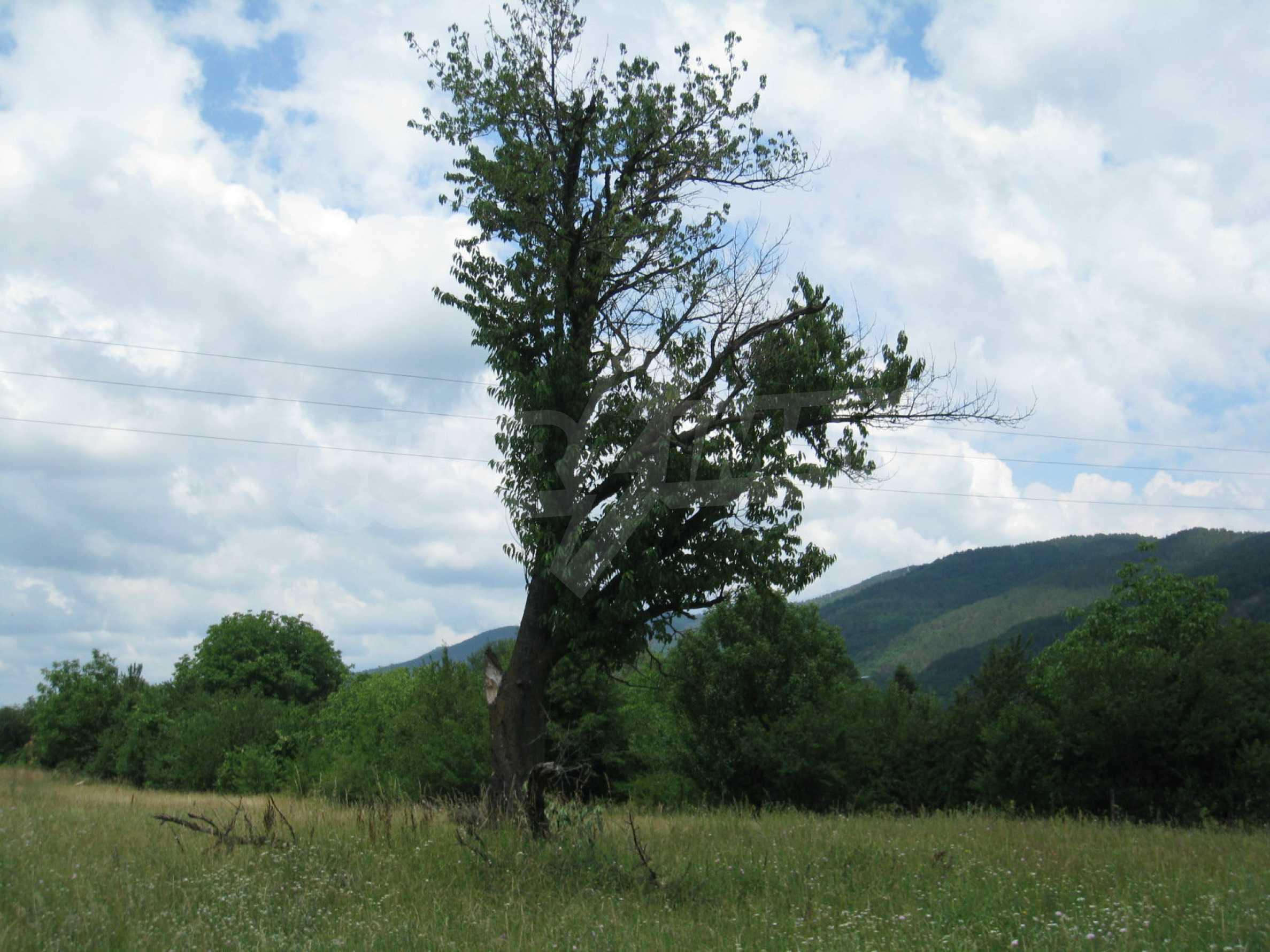 Reguliertes Grundstück mit Blick auf die Berge in der Nähe von Pravets 19