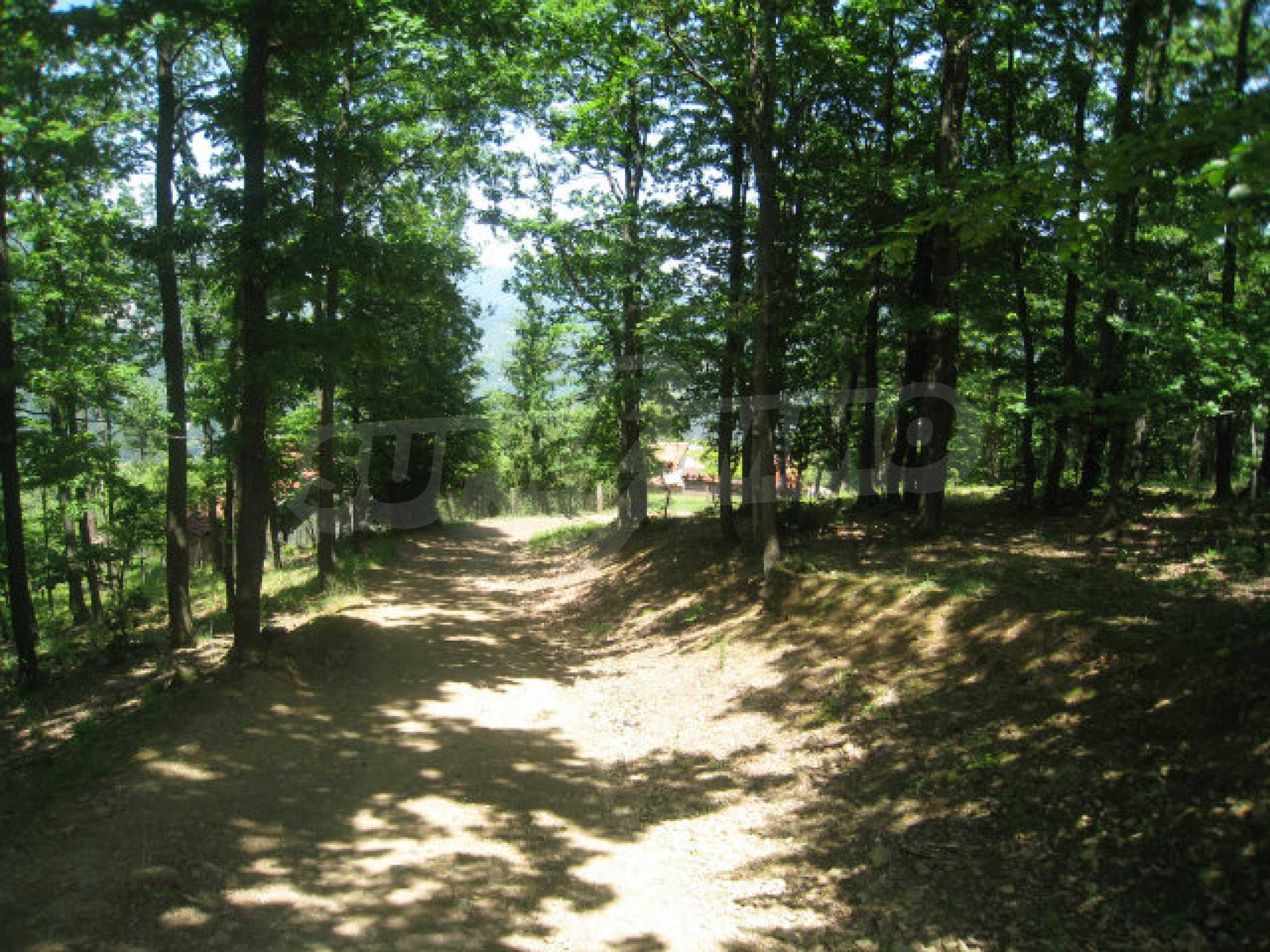 Plot for sale in villa area of Svoge