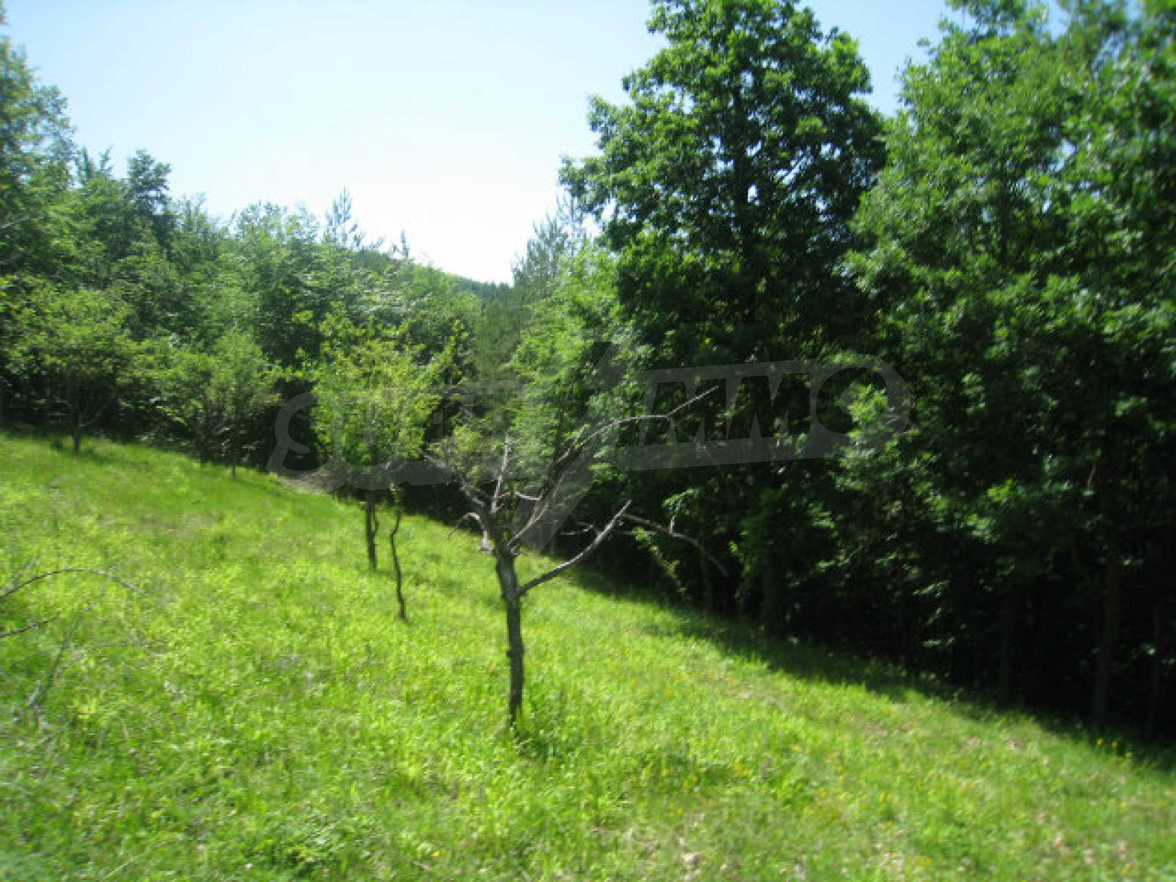 Plot for sale in villa area of Svoge 24