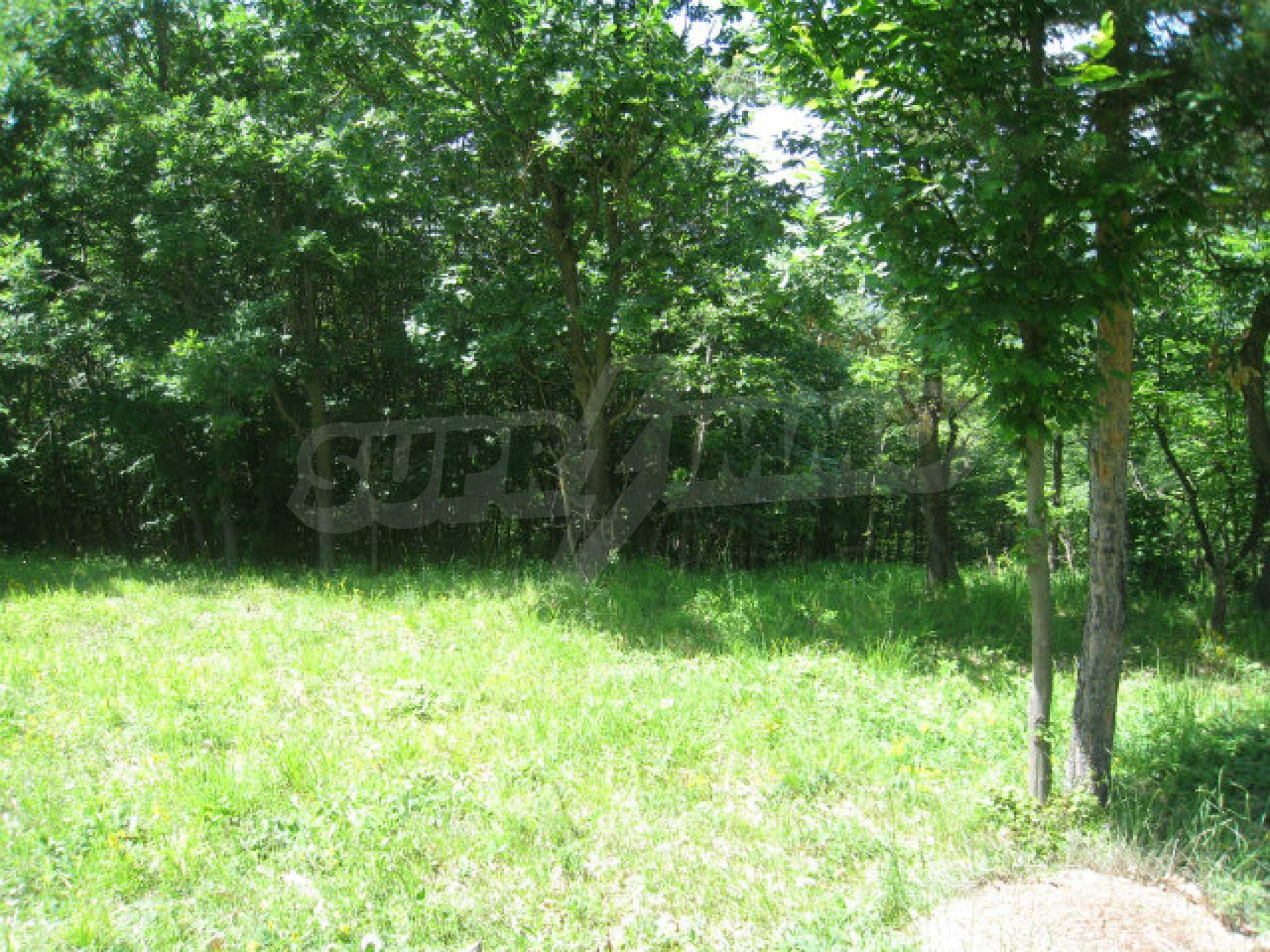 Plot for sale in villa area of Svoge 25