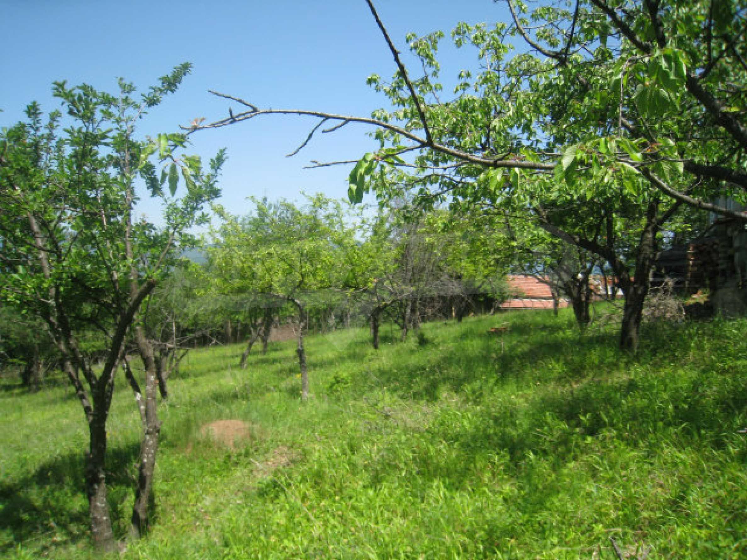 Plot for sale in villa area of Svoge 6