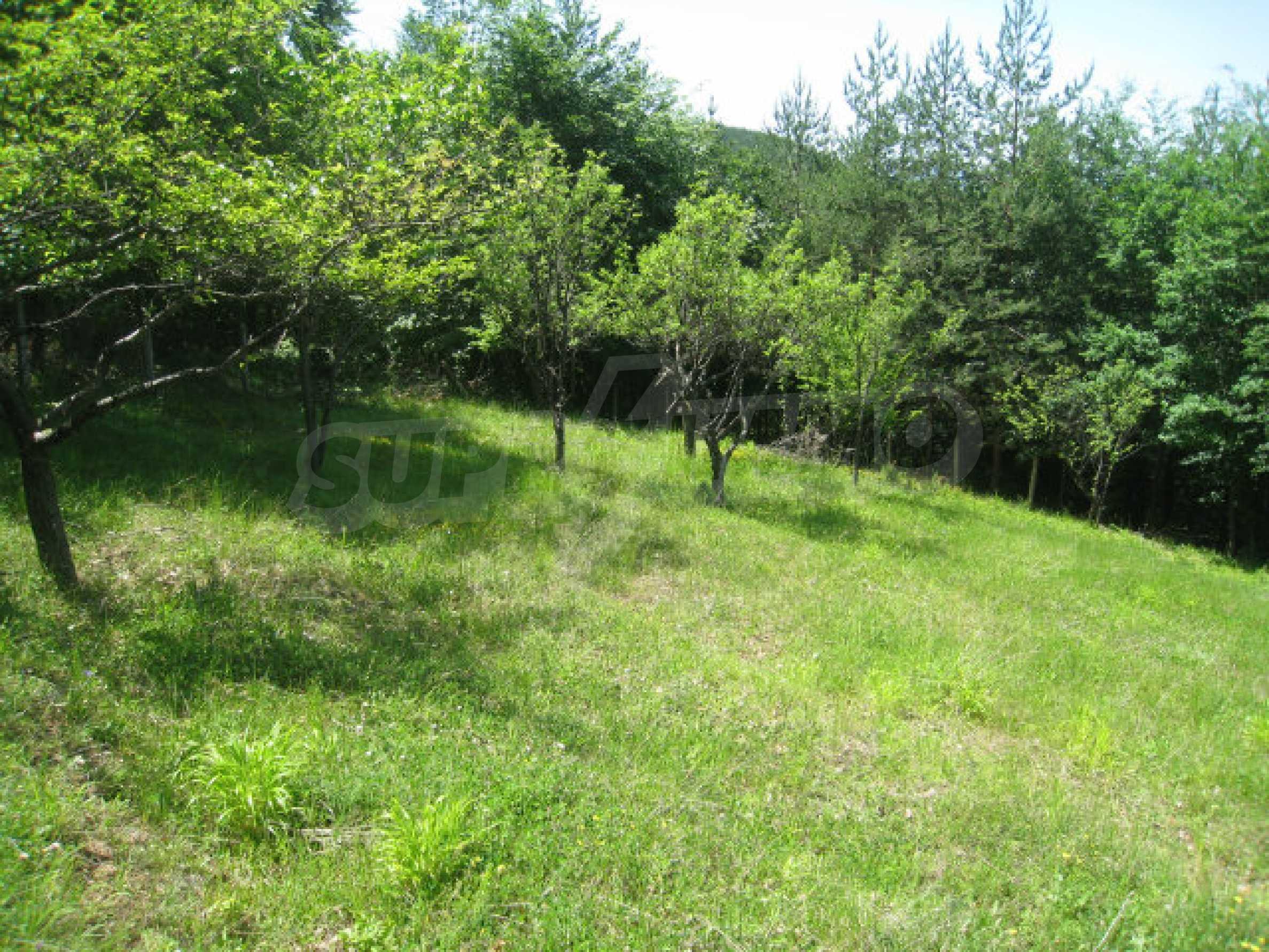 Plot for sale in villa area of Svoge 7